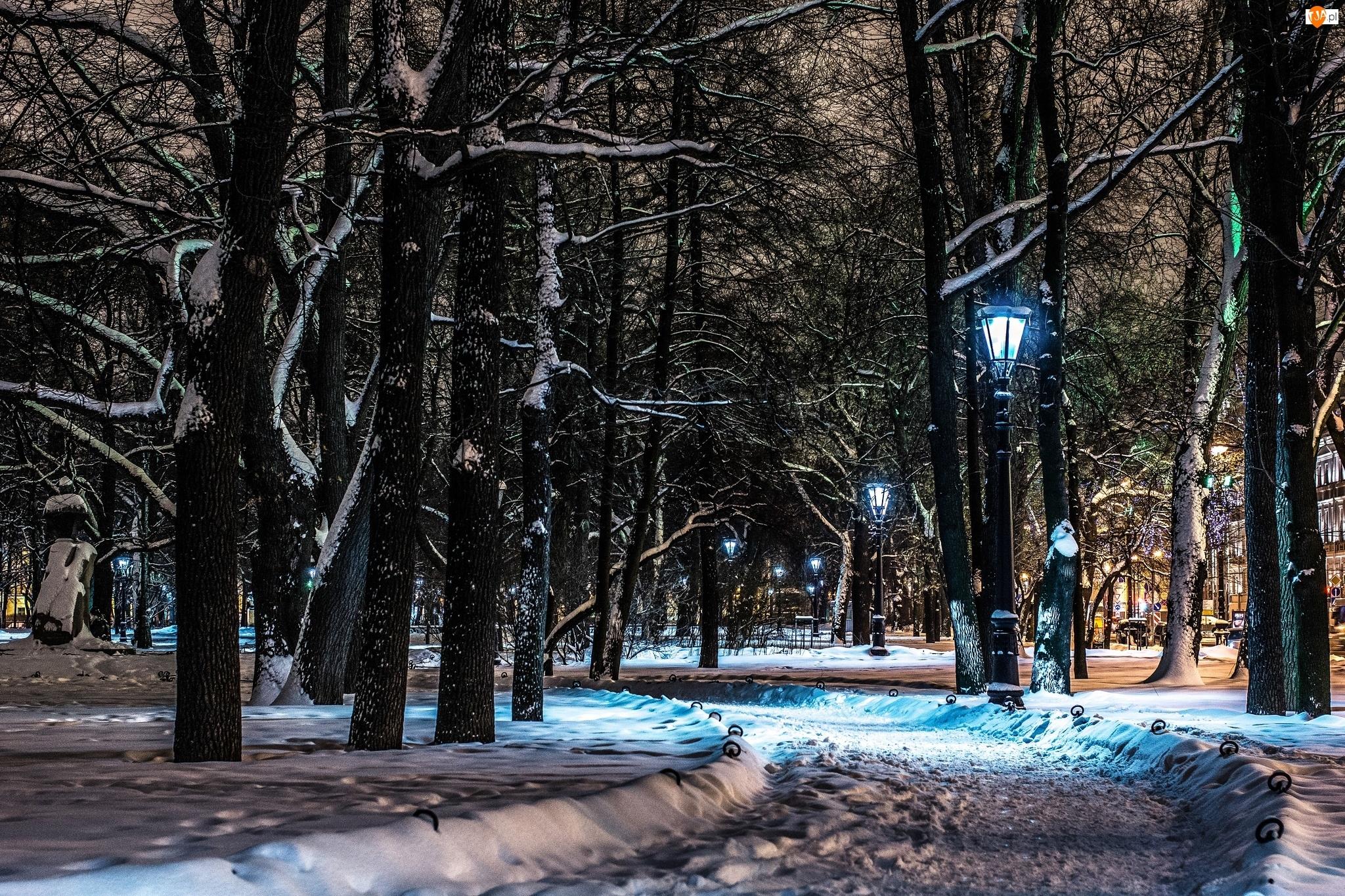 Petersburg, Nocą, Rosja, Alejka Latarnie, Sankt, Park
