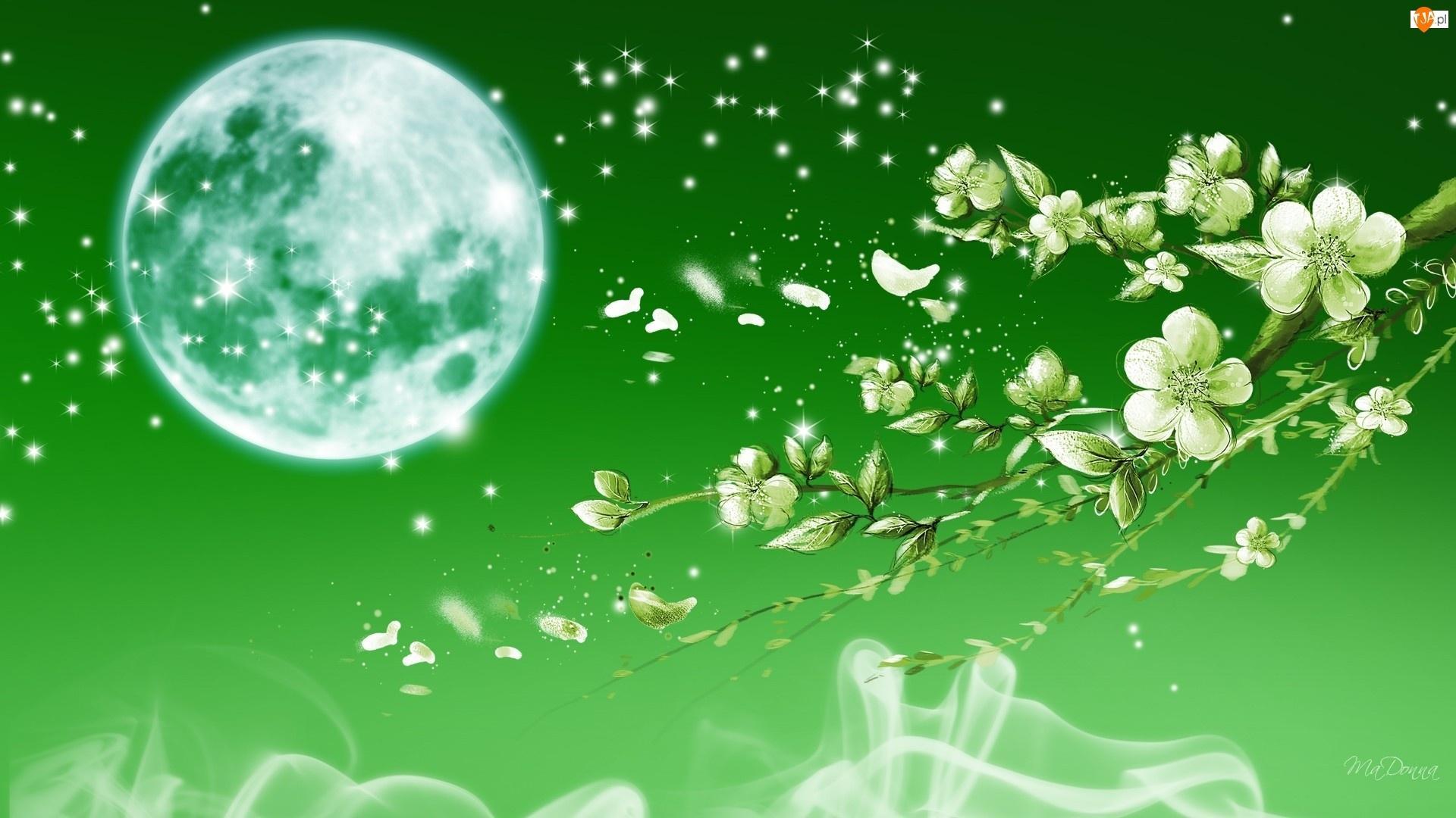 Zielona tapeta, Kwiaty