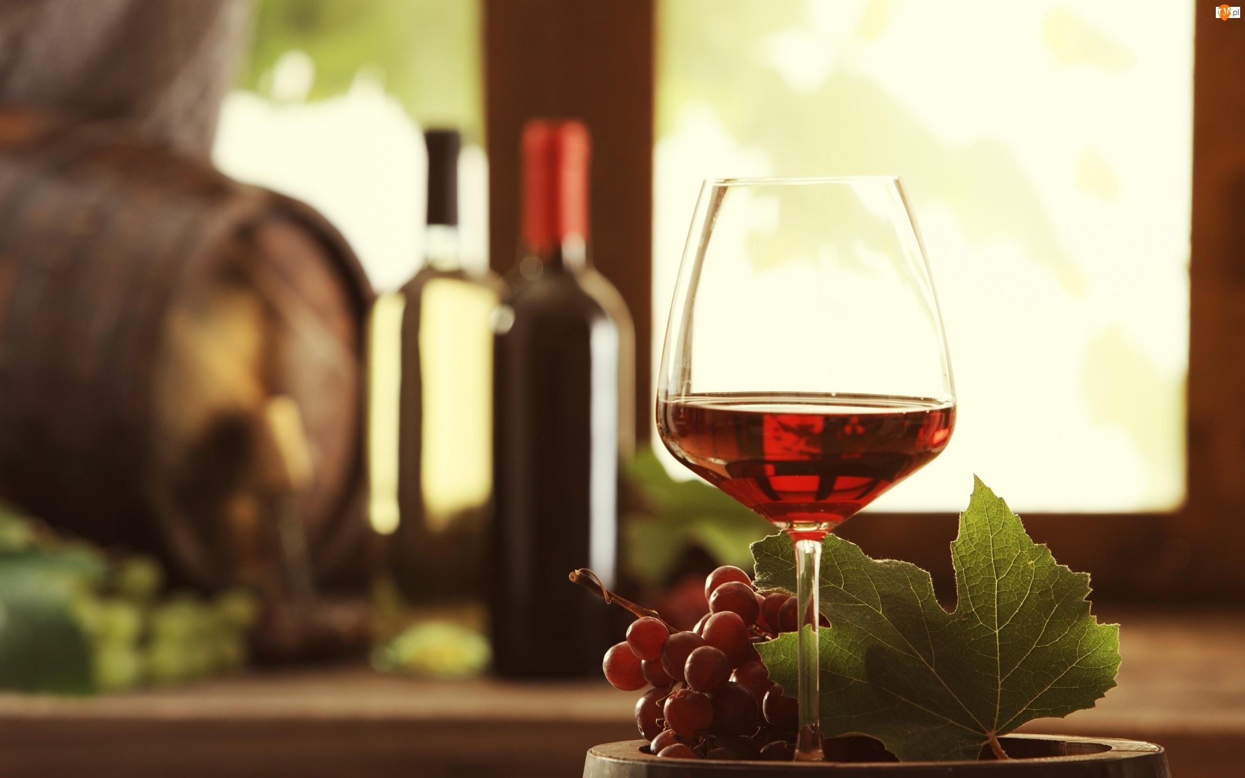 Liść, Kieliszek, Winogrono, Wino, Owoce