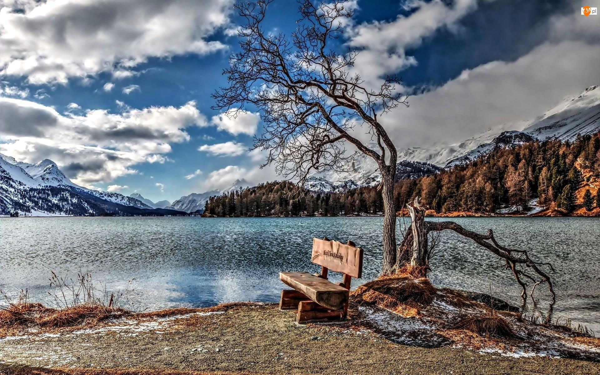 Ławka, Jezioro, Alpy, Góry, HDR, Szwajcaria, Drzewo