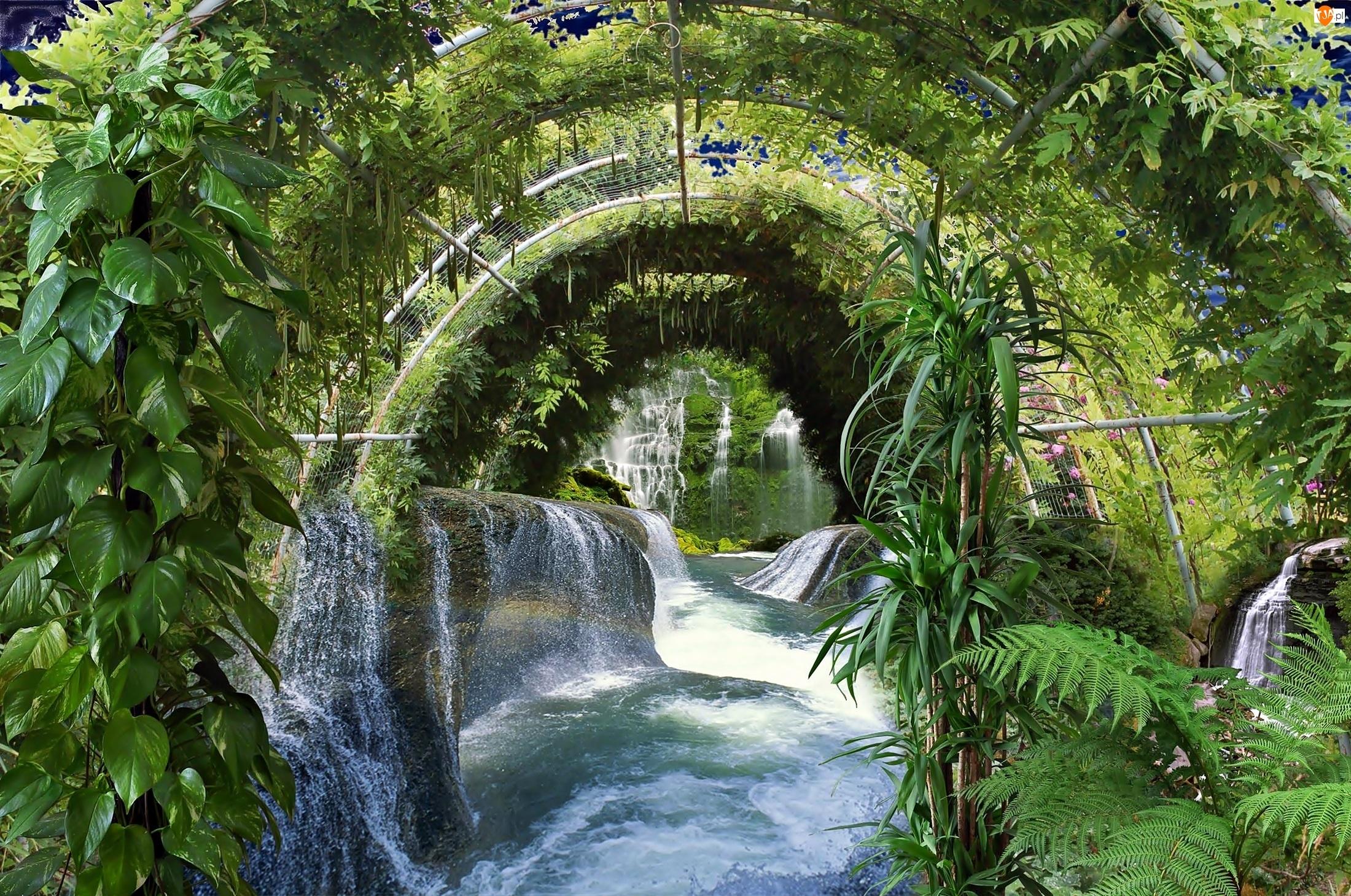 Rzeka, Roślinność, Wodospad, Skały