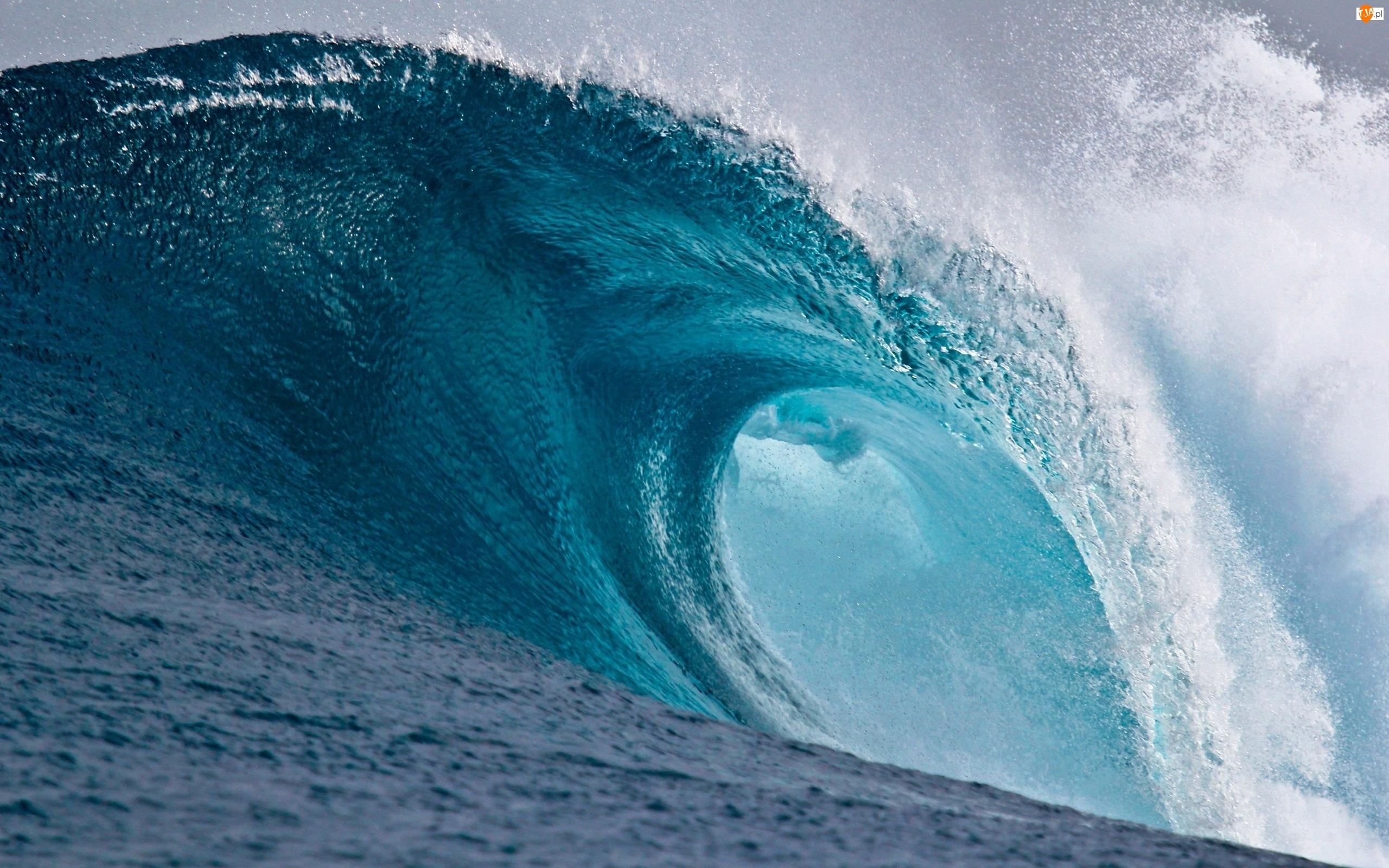 Fala, Morze