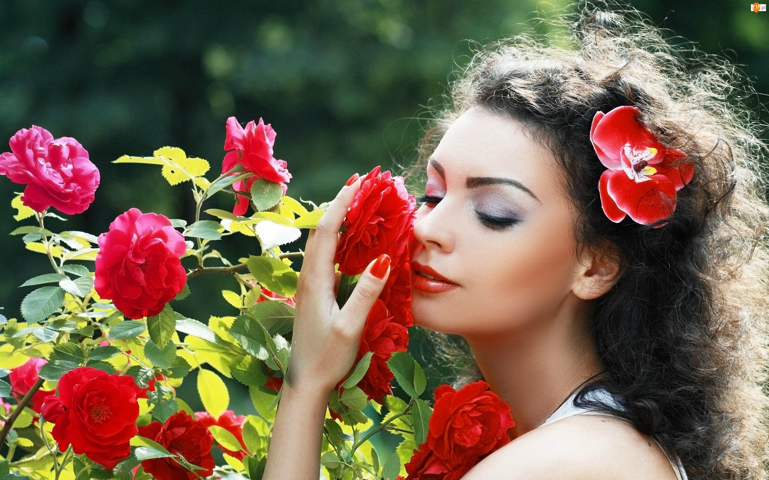 Włosach, Makijaż, Kwiat, Róży, Kobieta, Park, We, Krzew