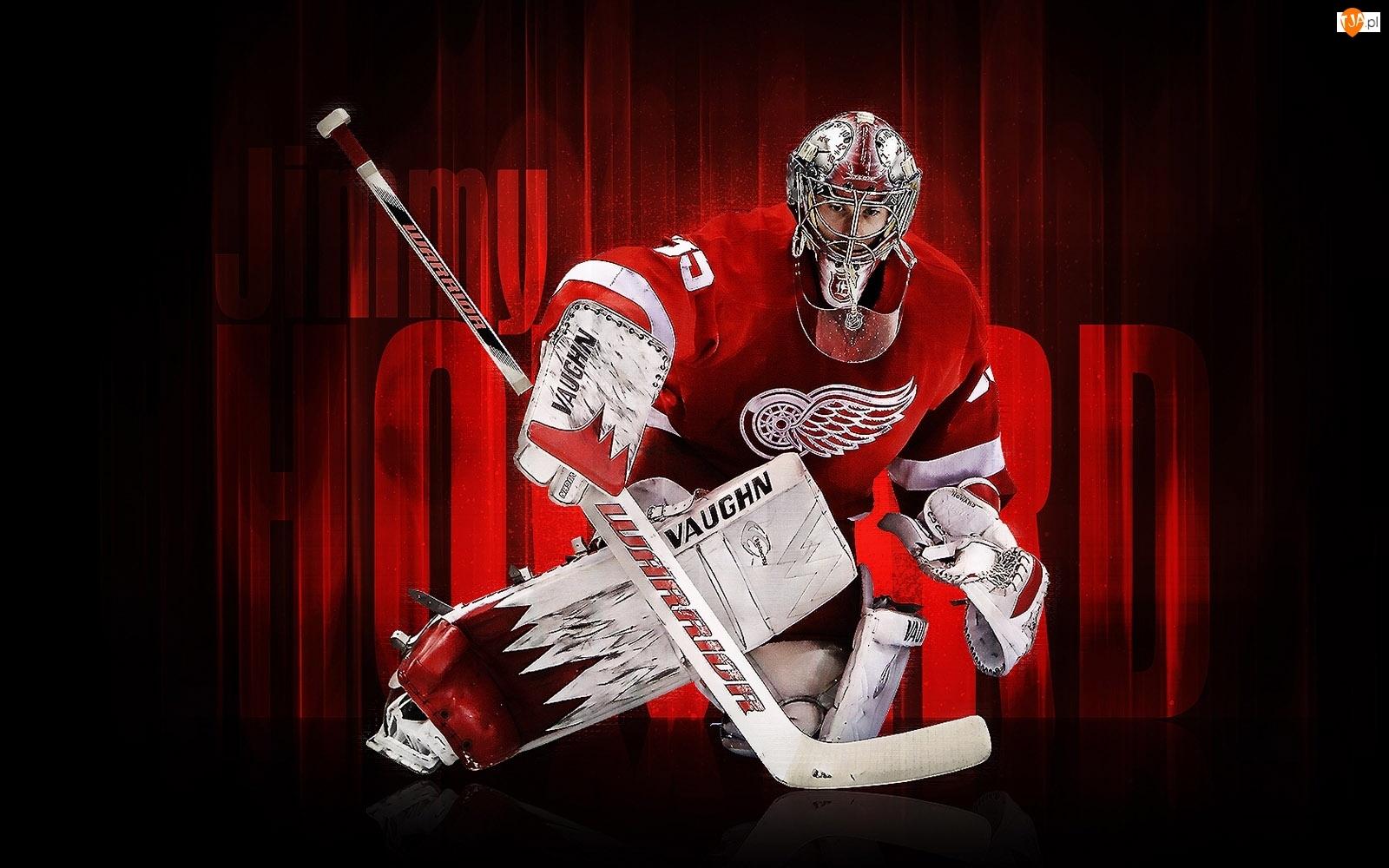 Hokej, NHL, Bramkarz, Detroit Red Wings