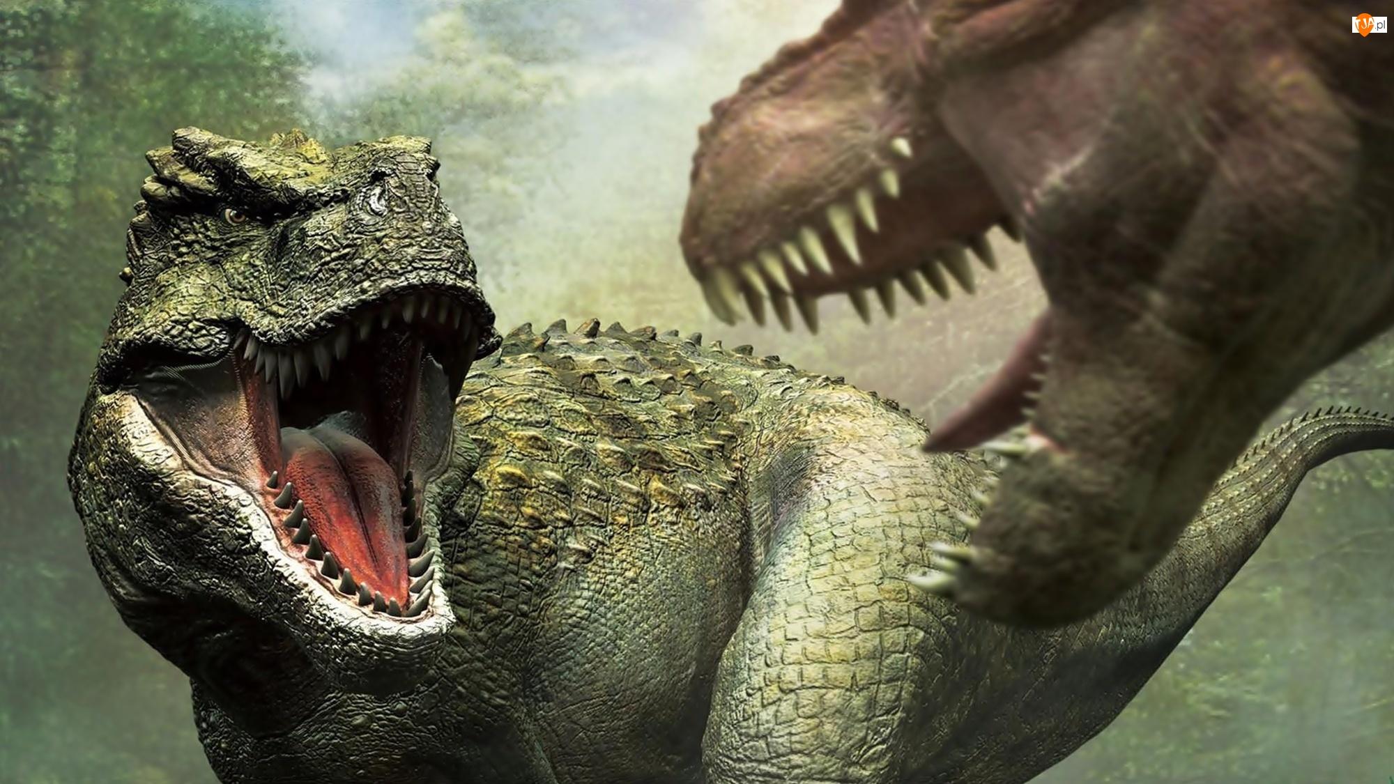 Dinozaury, Zwierzęta, Tyranozaur, Prehistoryczne