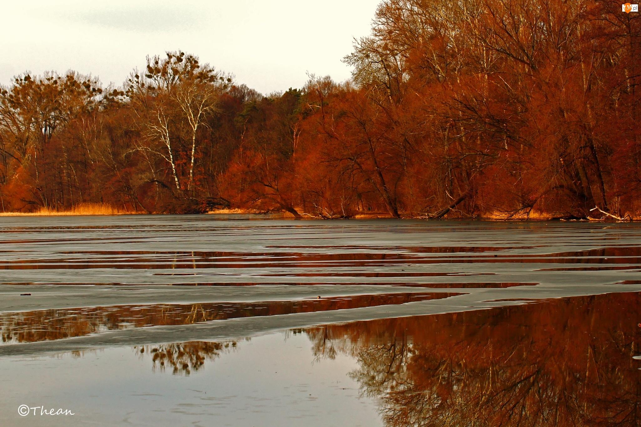 Topniejące, Przedwiośnie, Jezioro, Drzewa