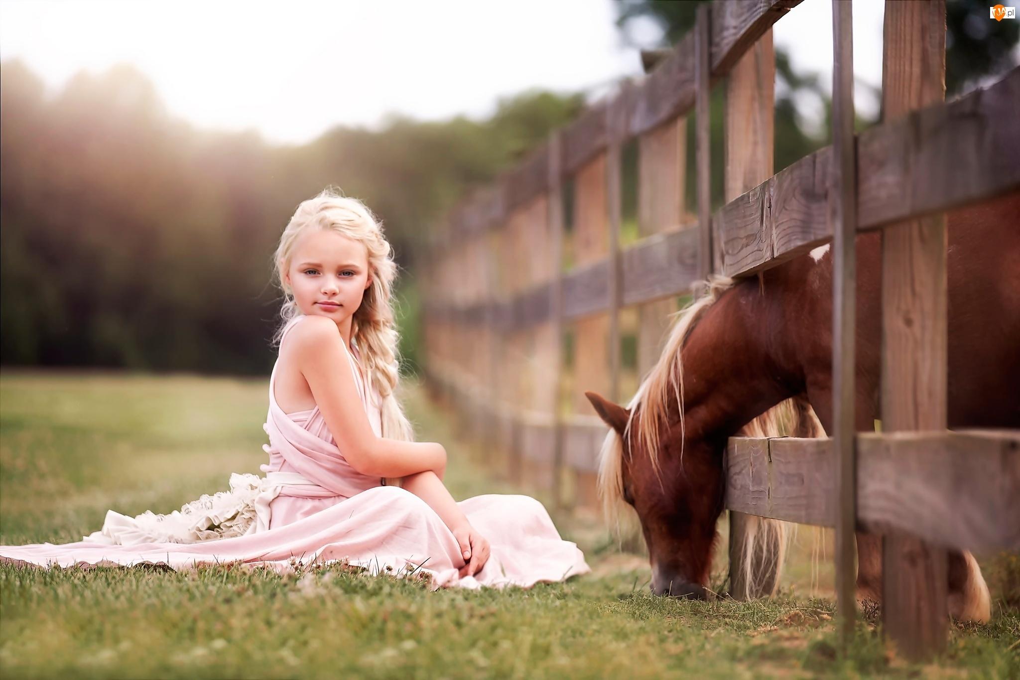 Dziewczynka, Ogrodzenie, Koń, Płot