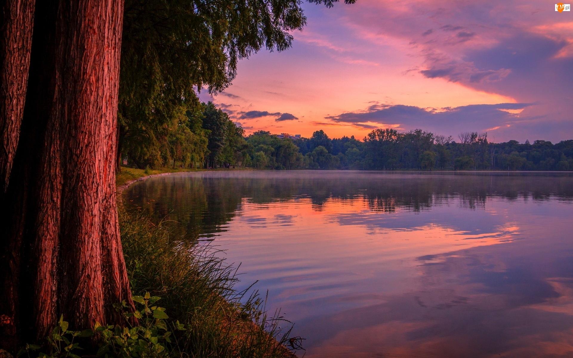 Jezioro, Słońca, Las, Zachód