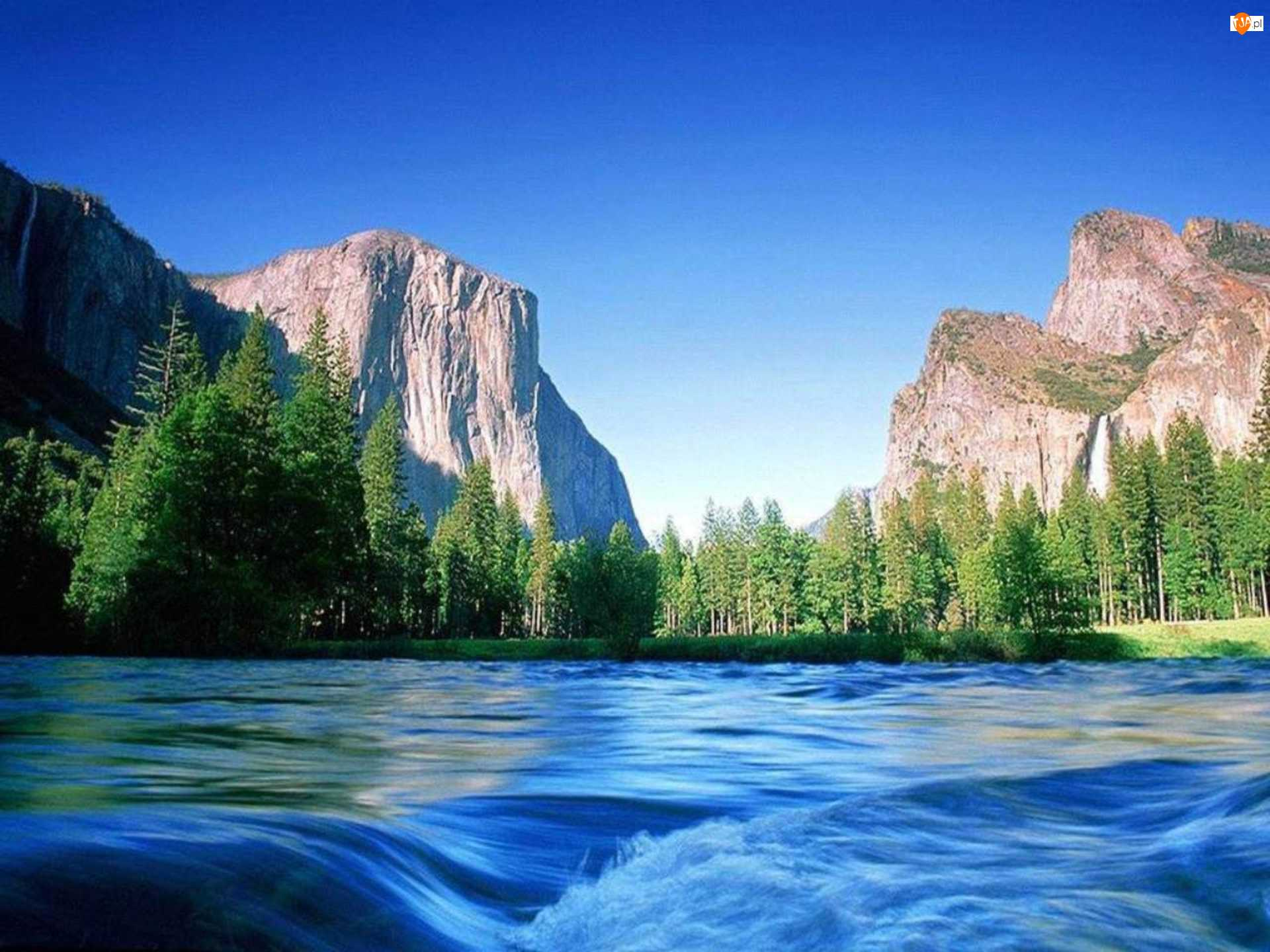 Rzeka, Góry, Drzewa