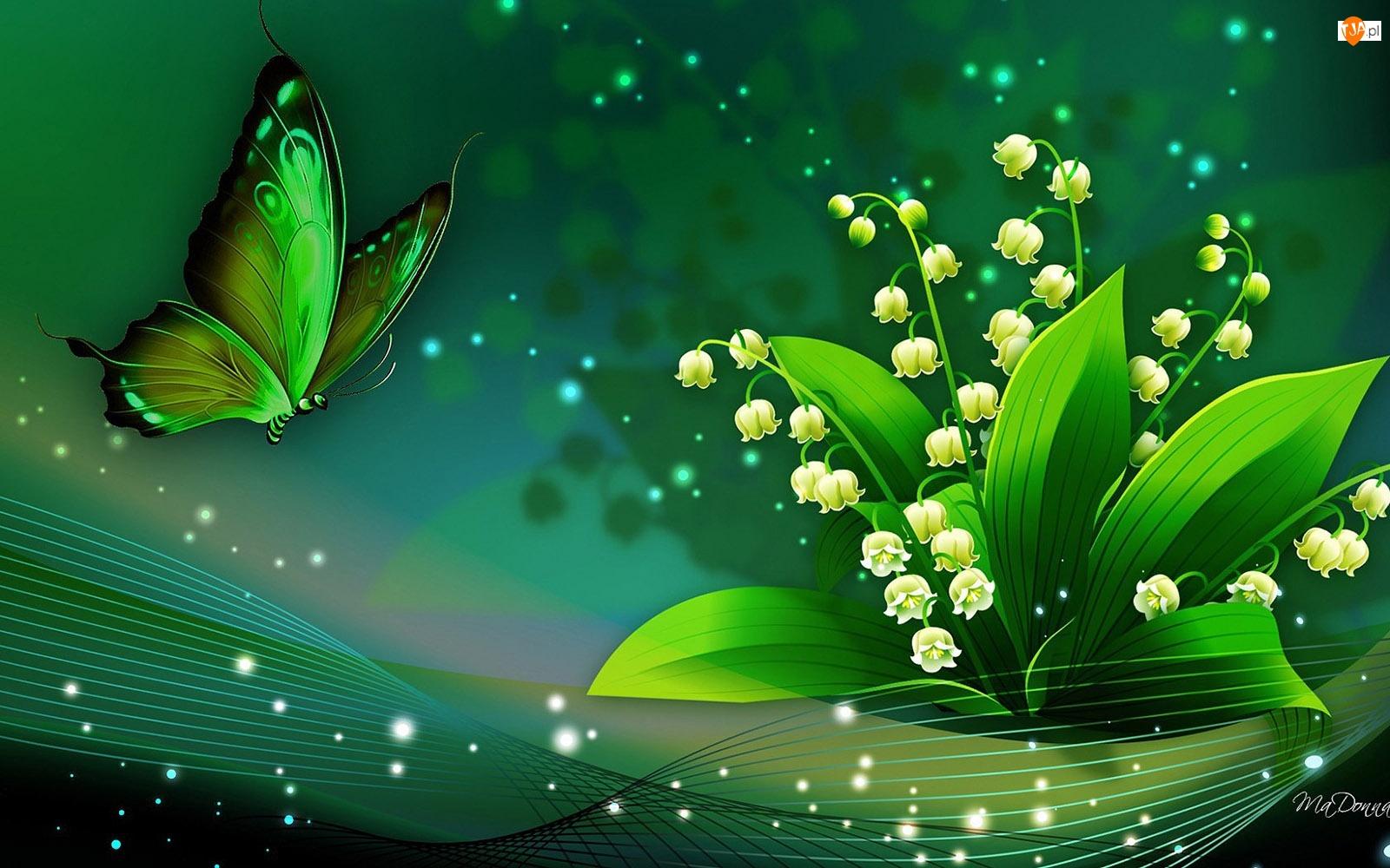 Grafika, Konwalie, Motyl, Motylek