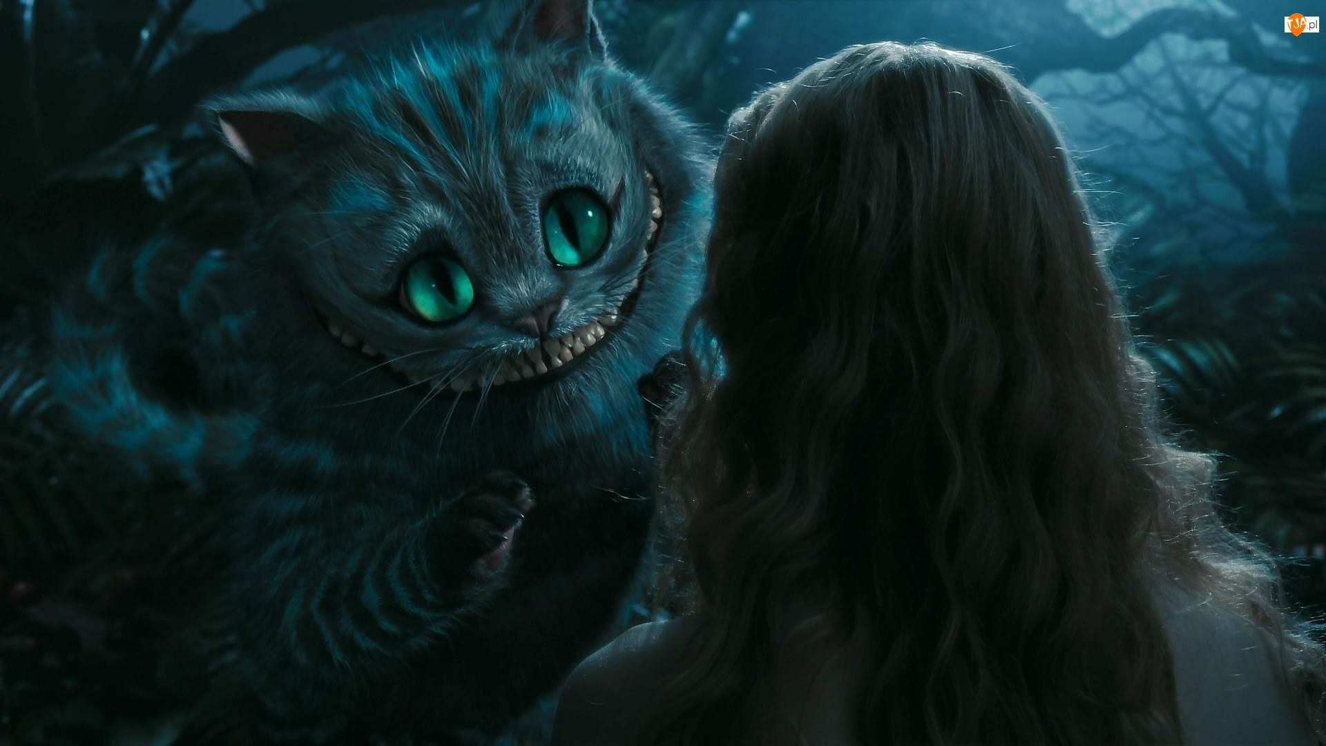 Dziewczyna, Film, Alicja, Kot