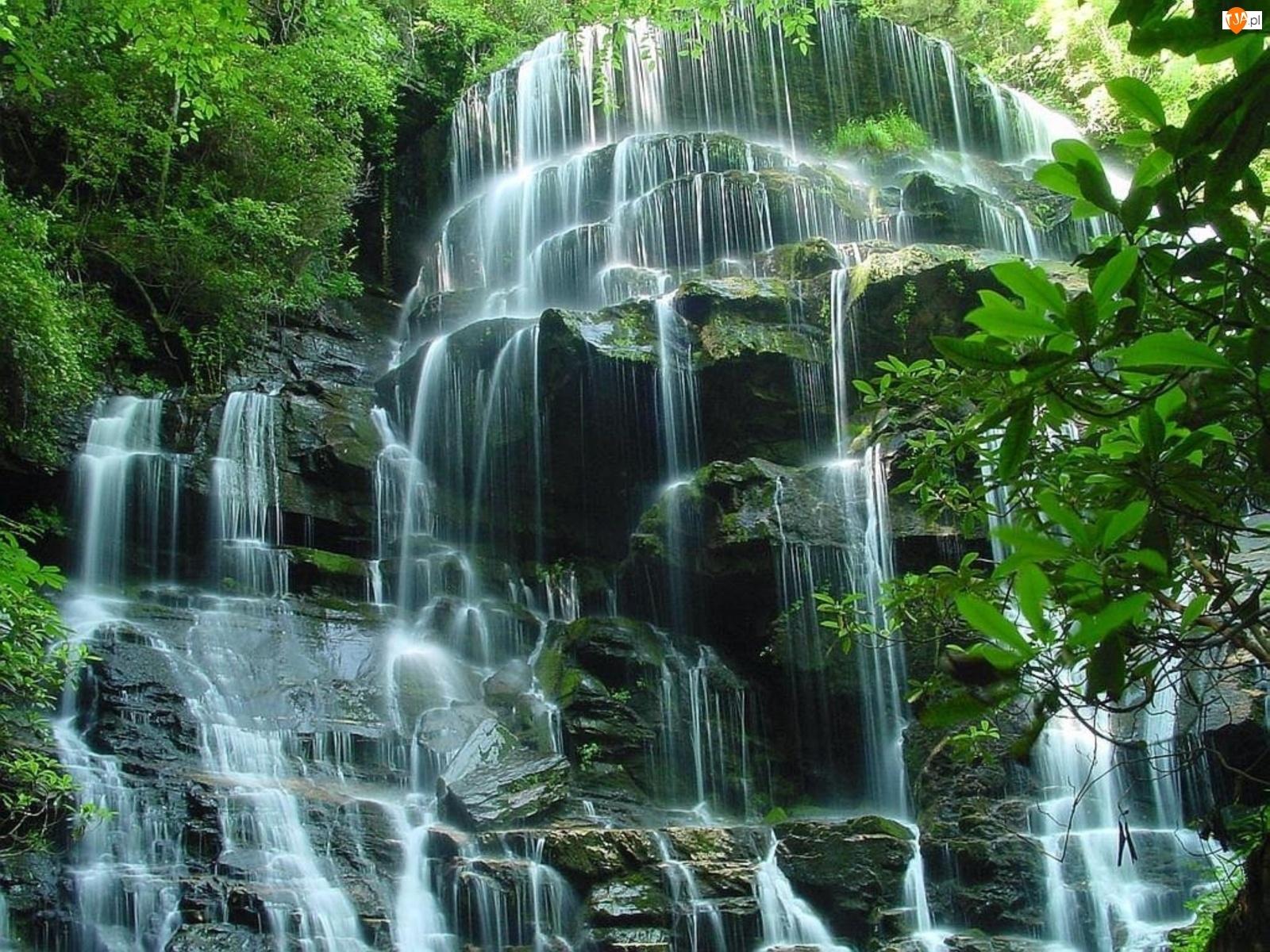 виды картинки на телефон водопады движущиеся море это симбиоз караоке