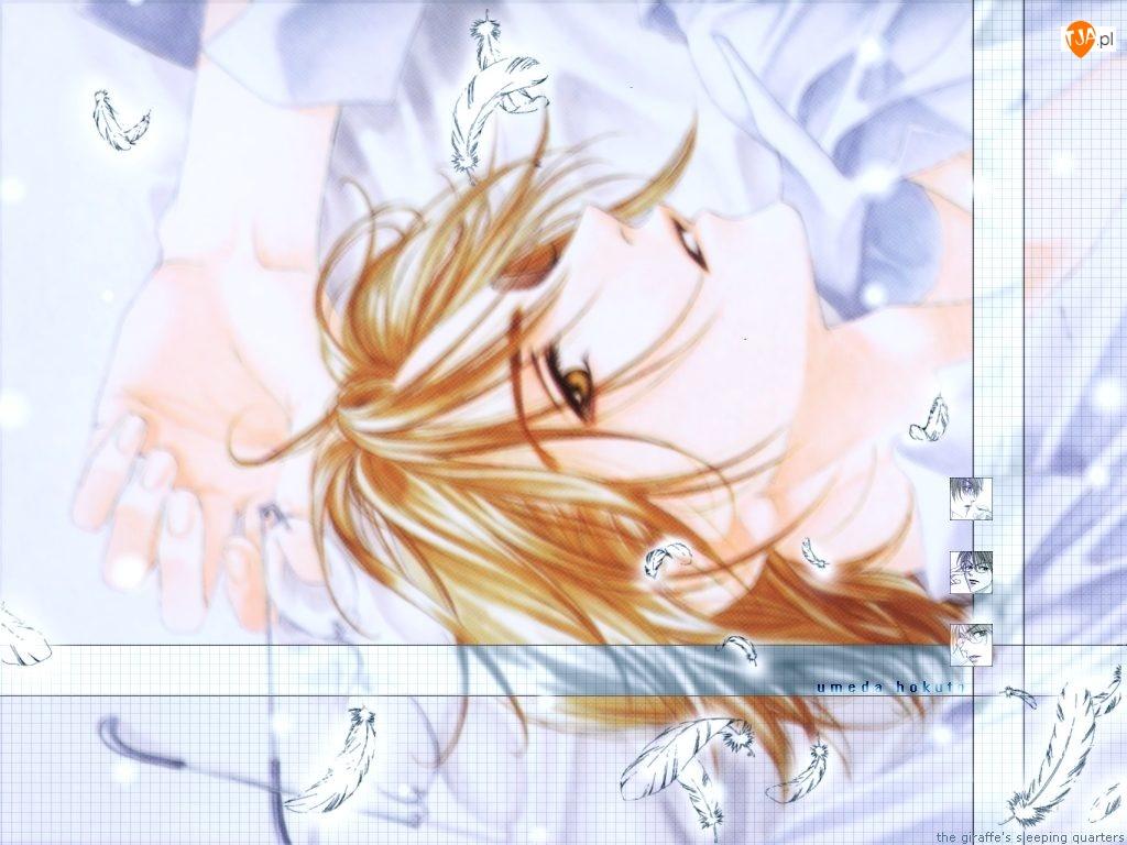 Hana Zakari No Kimitachi E, twarz, osoba, pióra