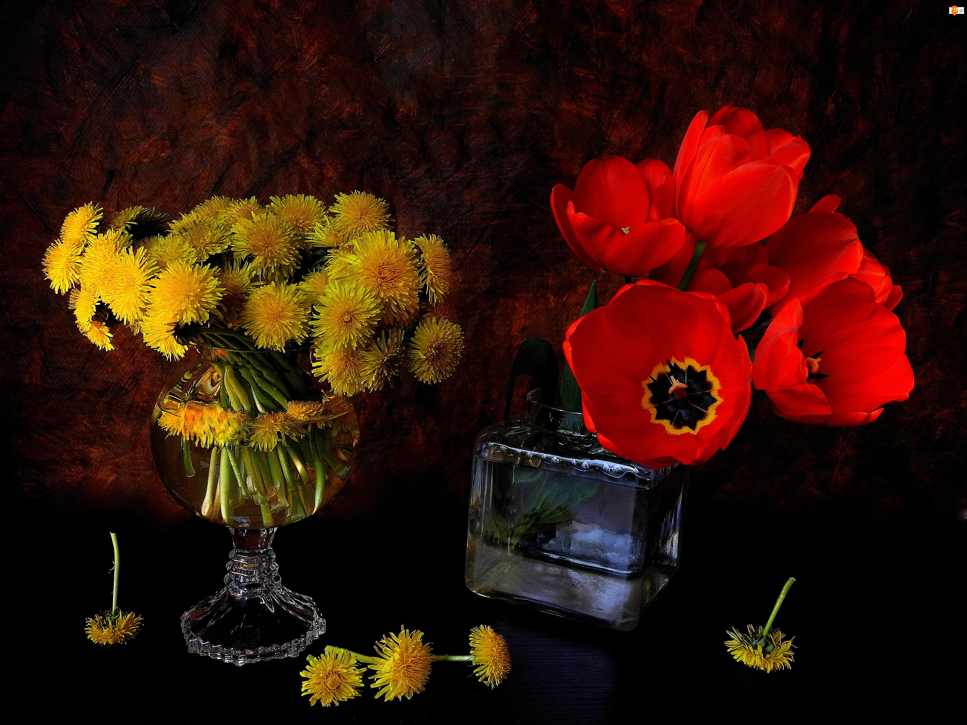 Czerwone, Szkło, Tulipany, Mlecze