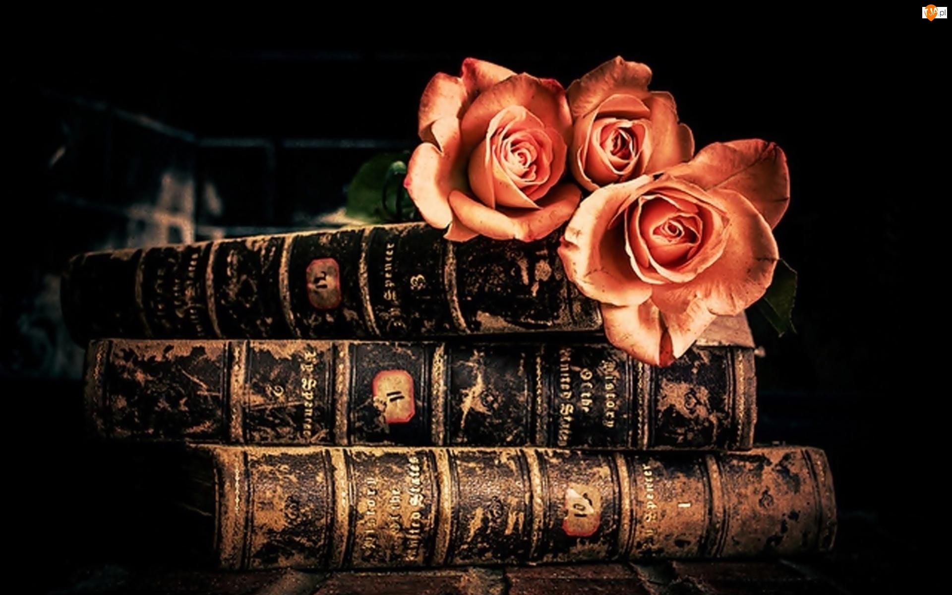 Kompozycja, Stare, Bukiet, Księgi, Róż