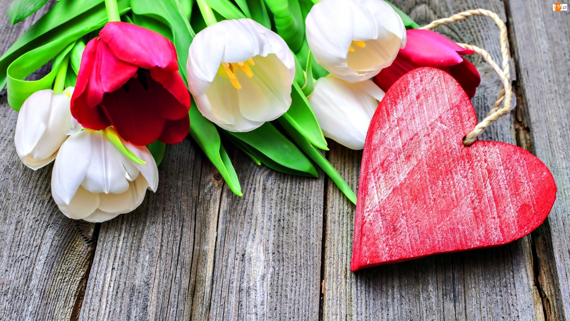 Serce, Walentynki, Tulipany