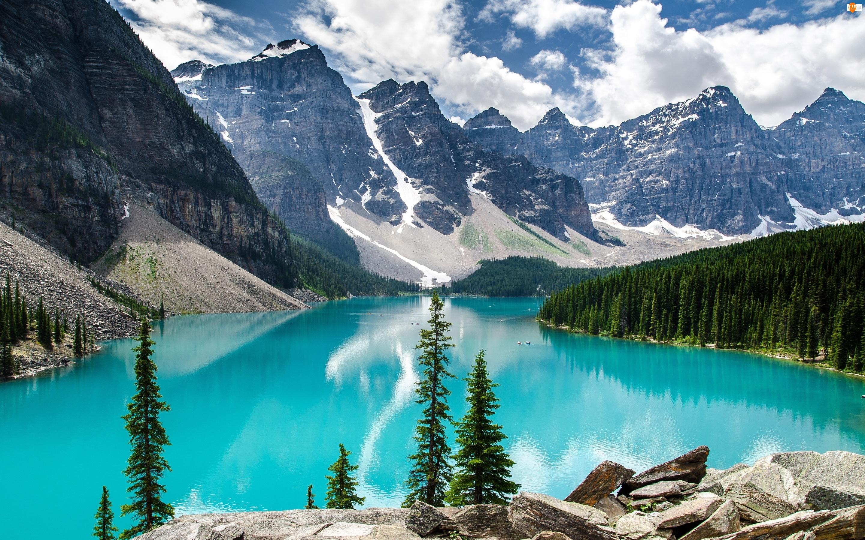 Góry, Las, Kanada, Skały, Park Narodowy Banff, Jezioro Moraine