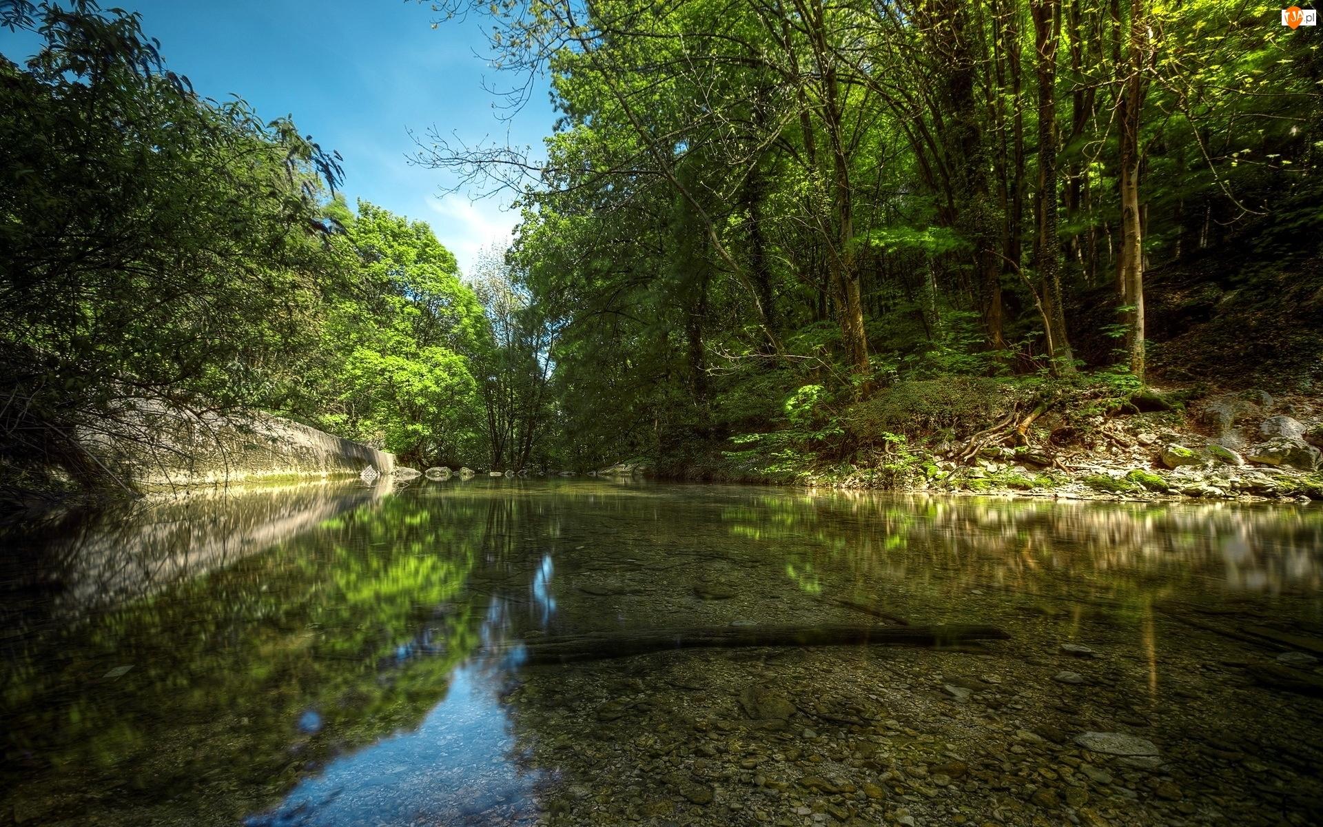 Drzewa, Rzeka, Kamienie