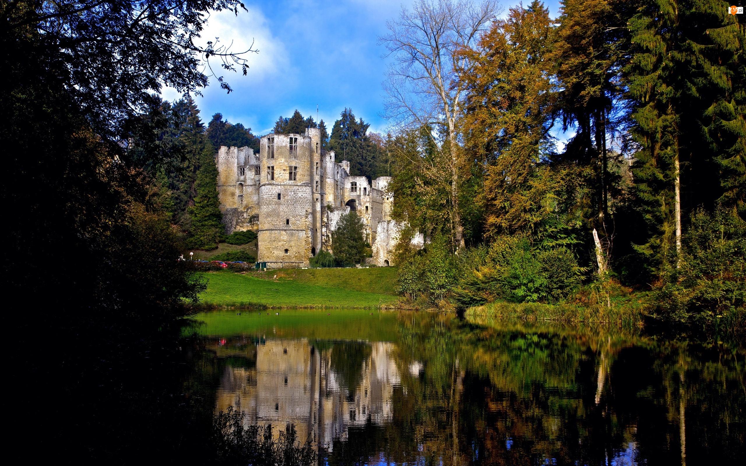 Zamek, Drzewa, Park, Rzeka