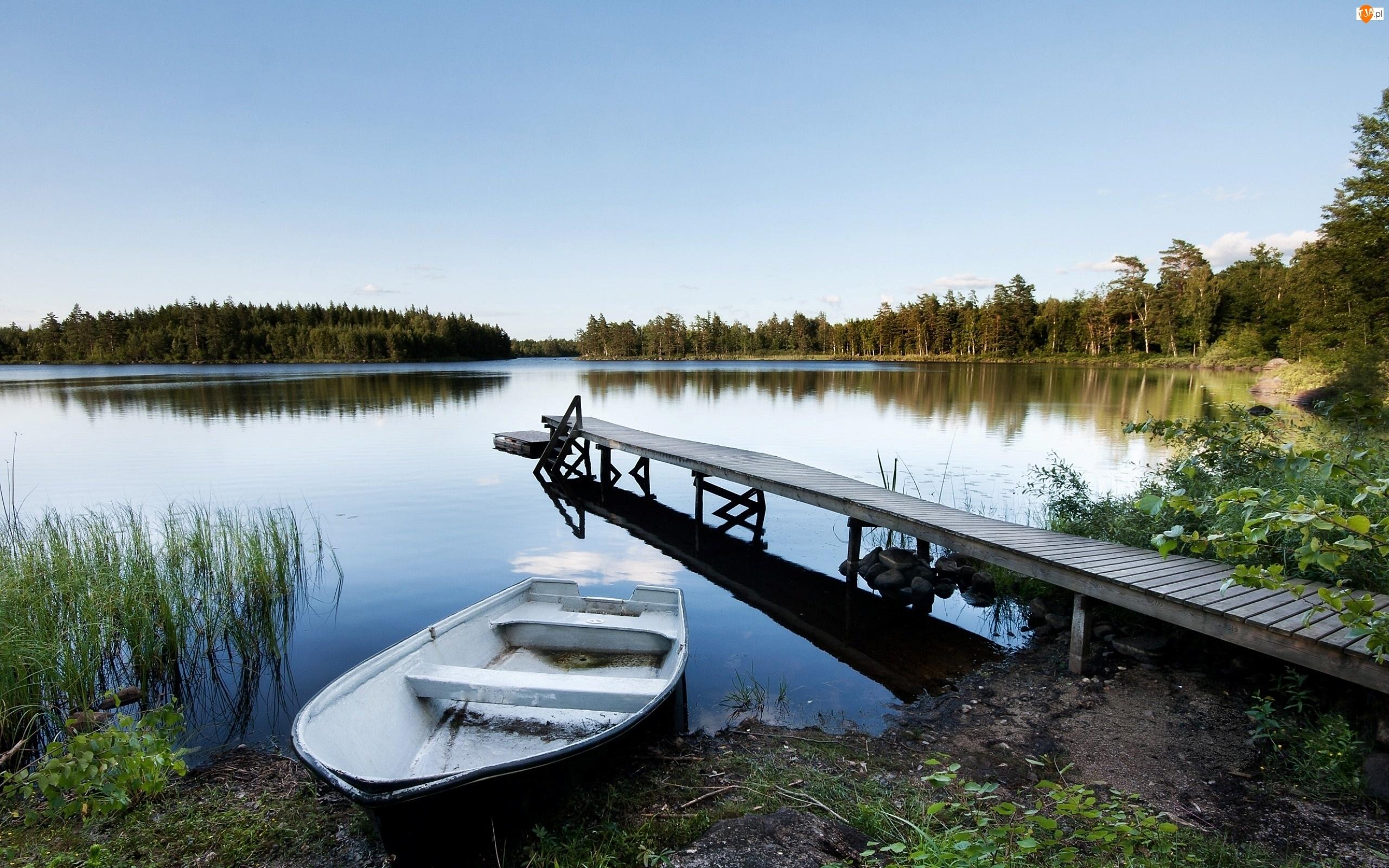 Łódka, Las, Jezioro, Pomost