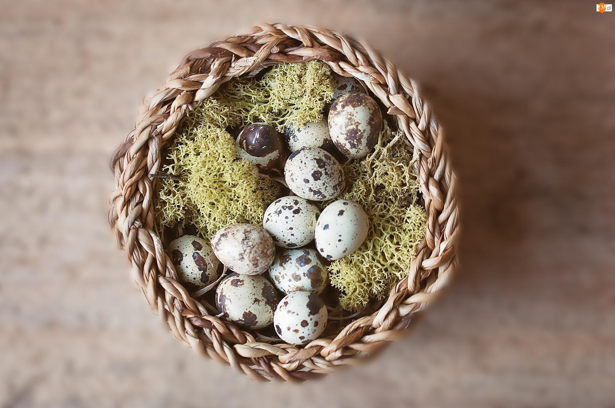 Mech, Wielkanoc, Jajka, Nakrapiane, Koszyk