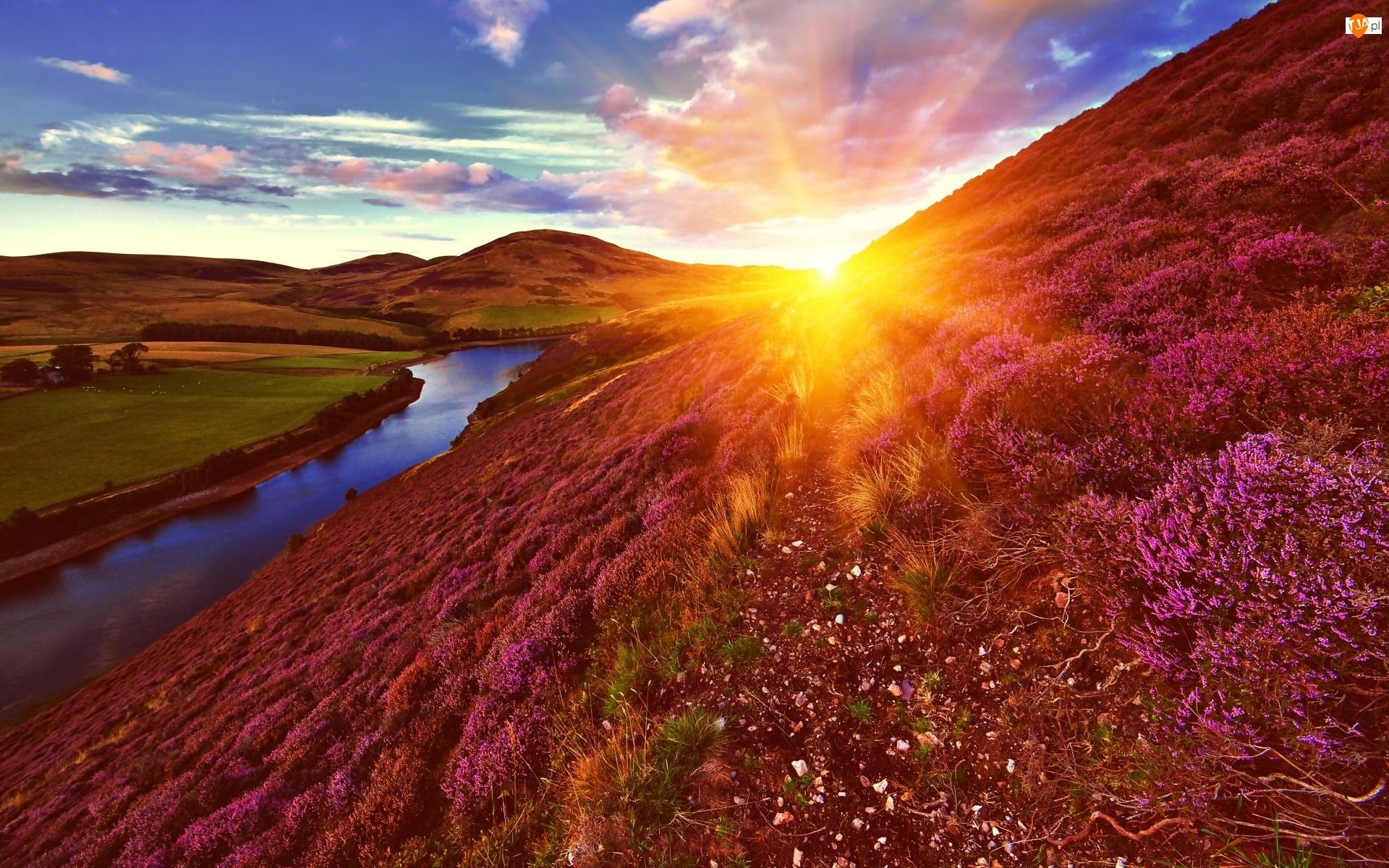 Wschód słońca, Wrzosy, Rzeka, Wzgórza