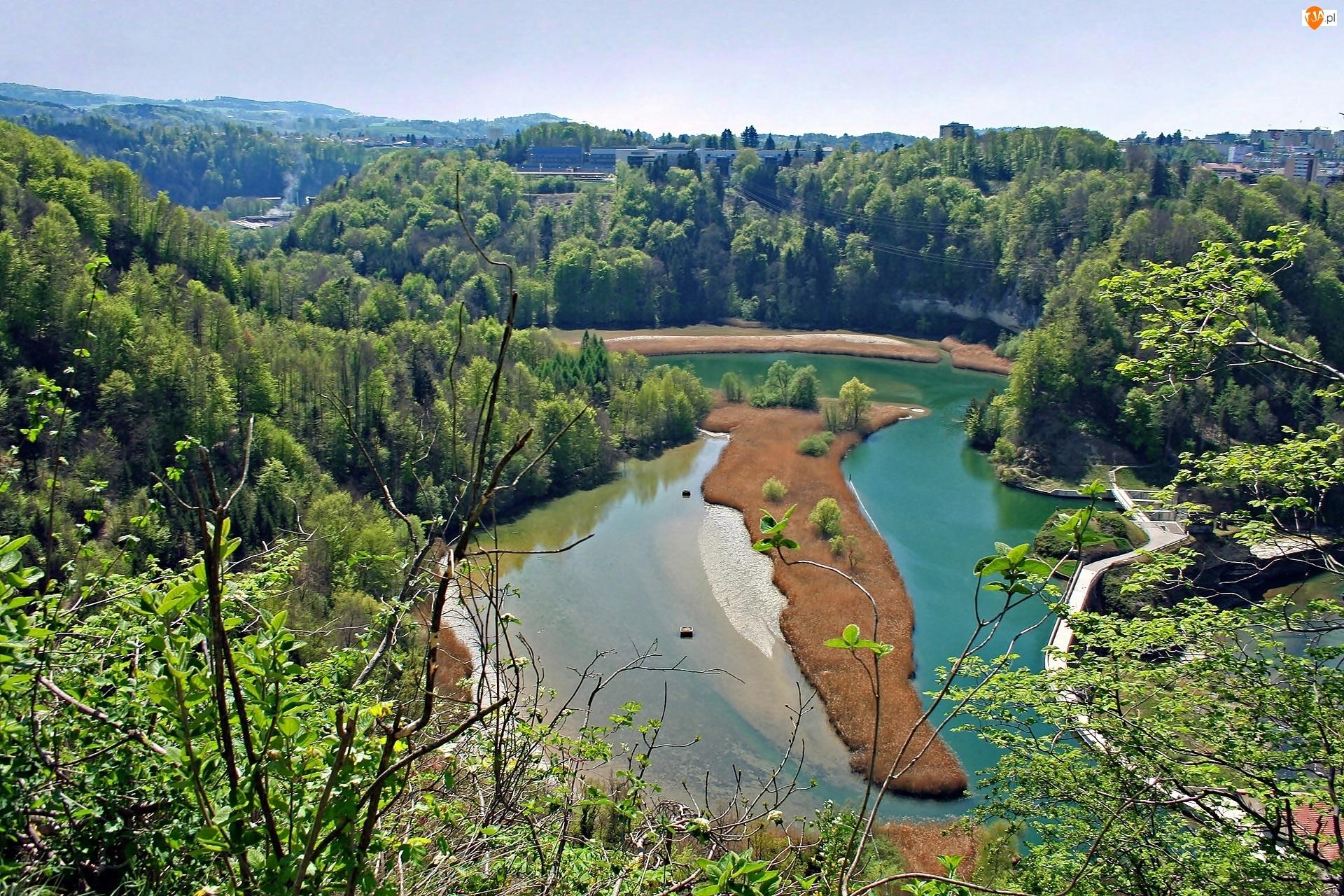 Rzeka, Fryburg, Sarine, Lasy