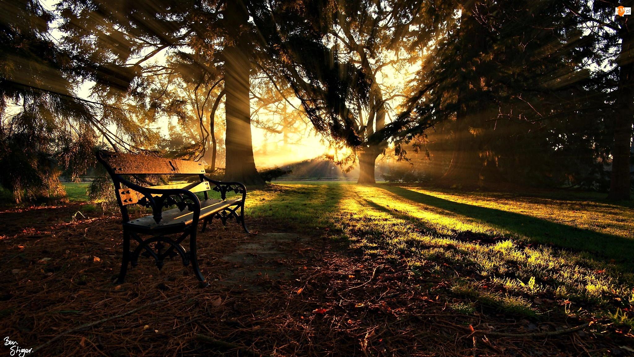 Park, Promienie Słońca, Ławka, Jesień