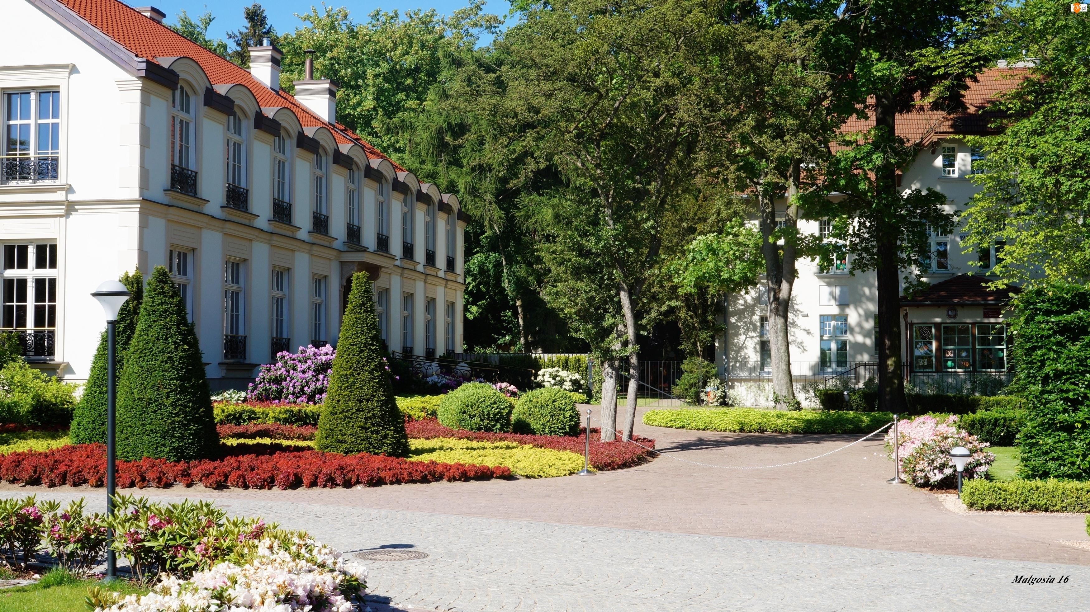 Kwiaty, Park Oliwski, Dworek, Budynek, Alejki, Ogród, Rośliny
