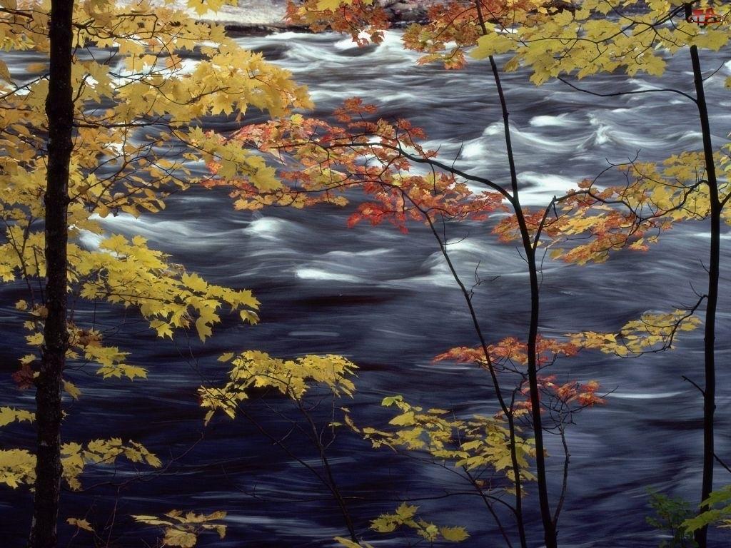 Rzeka, Jesień