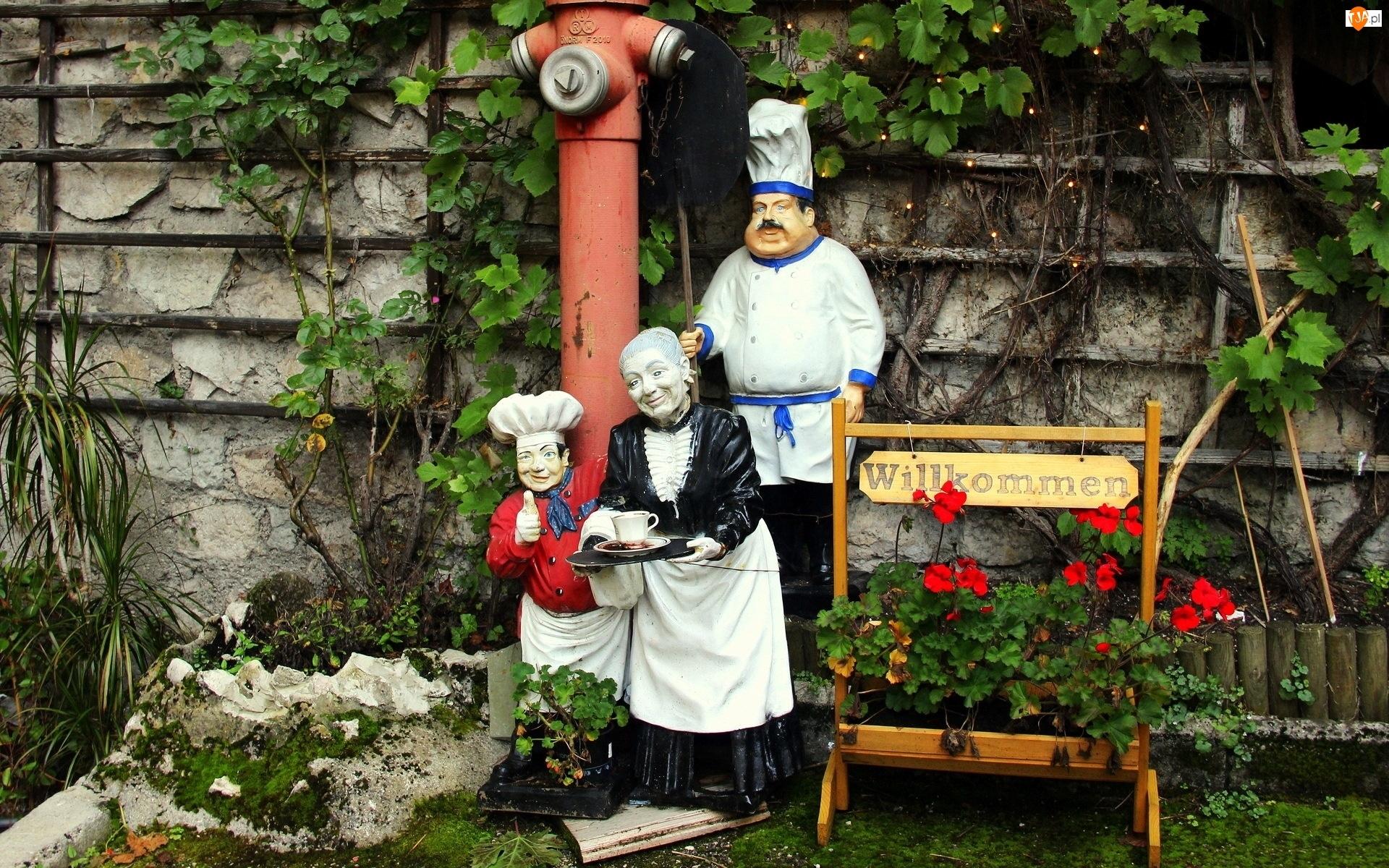 Gospodyni, Pelargonie, Figury, Ogródek, Kucharz, Kwiaty