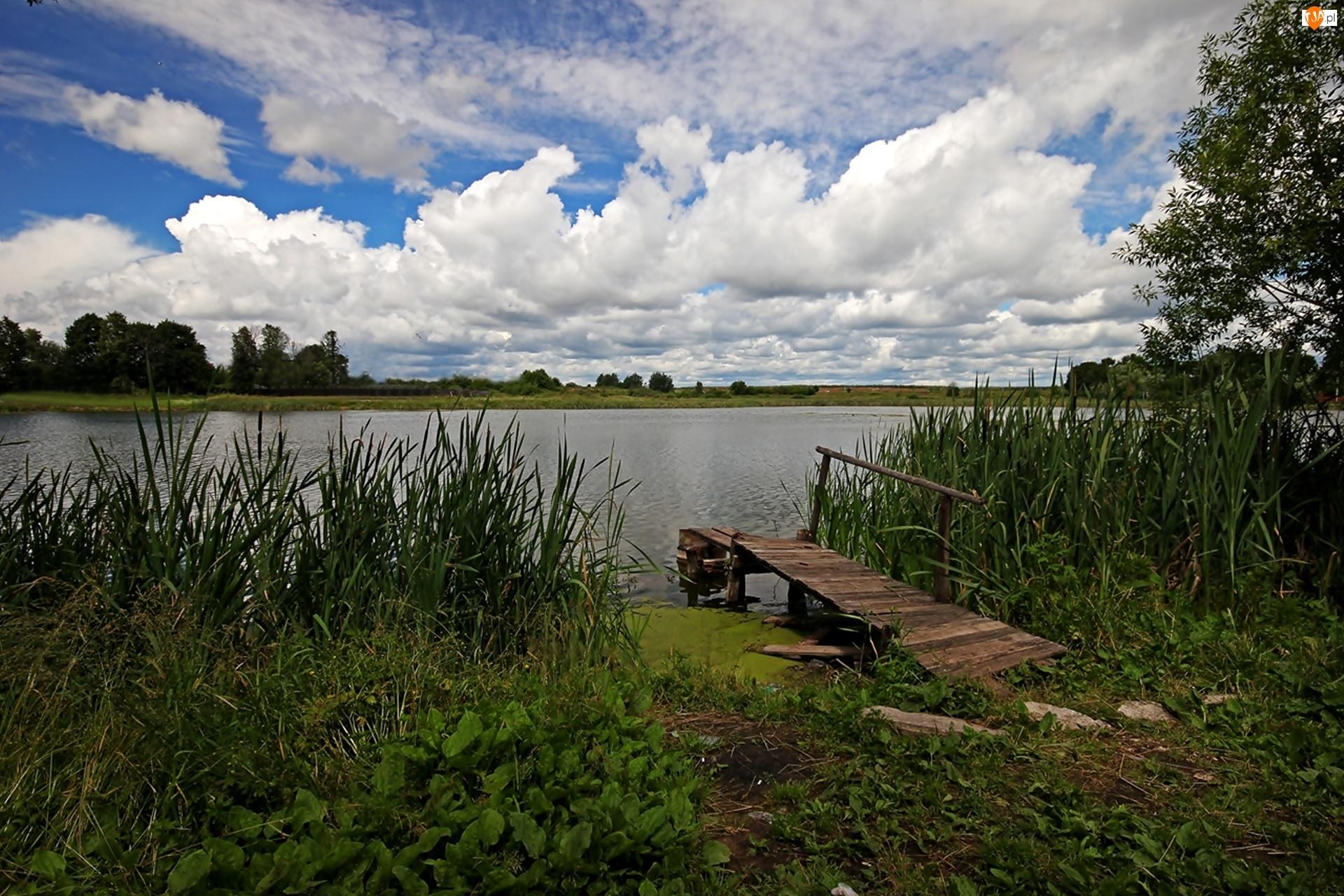Pomost, Jezioro, Trzcina