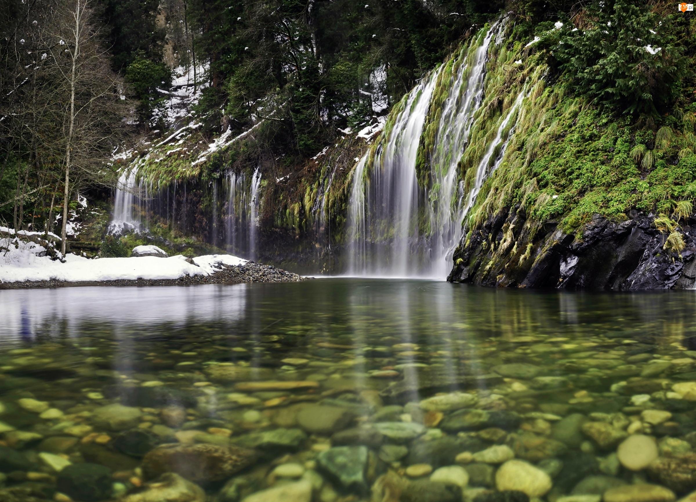 Sacramento, Mossbrae, Las, Kalifornia, Rzeka, Wodospad