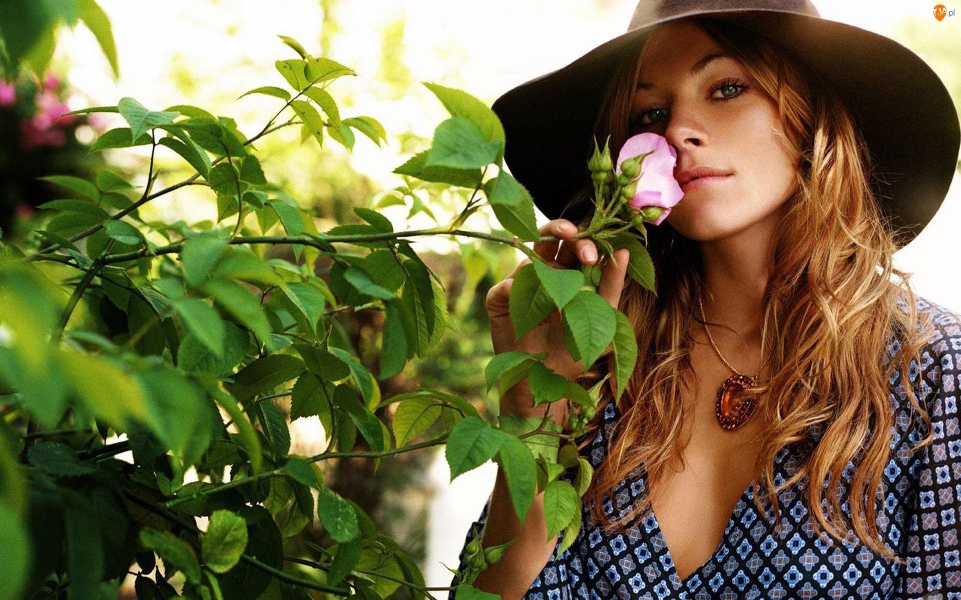 Biżuteria, Dzikiej, Dziewczyna, Róży, Kapelusz, Krzew