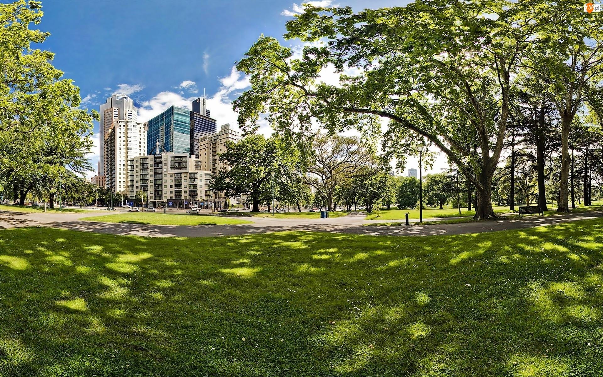 Carlton, Gardens, Chmur, Światło, Drapacze,  Melbourne, Park, Przebijające