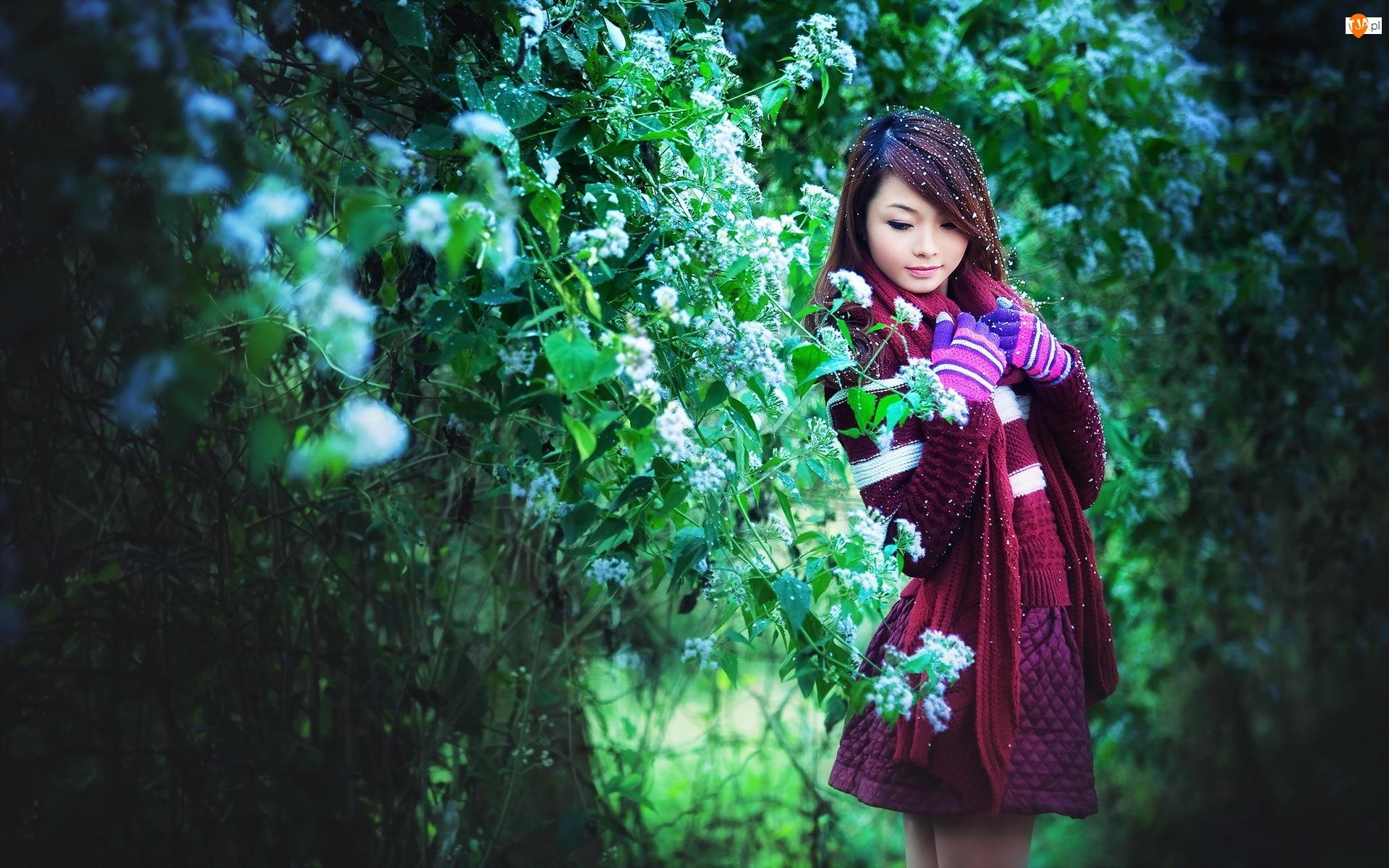 Krzewy, Tajlandzka, Park, Modelka, Kwitnące