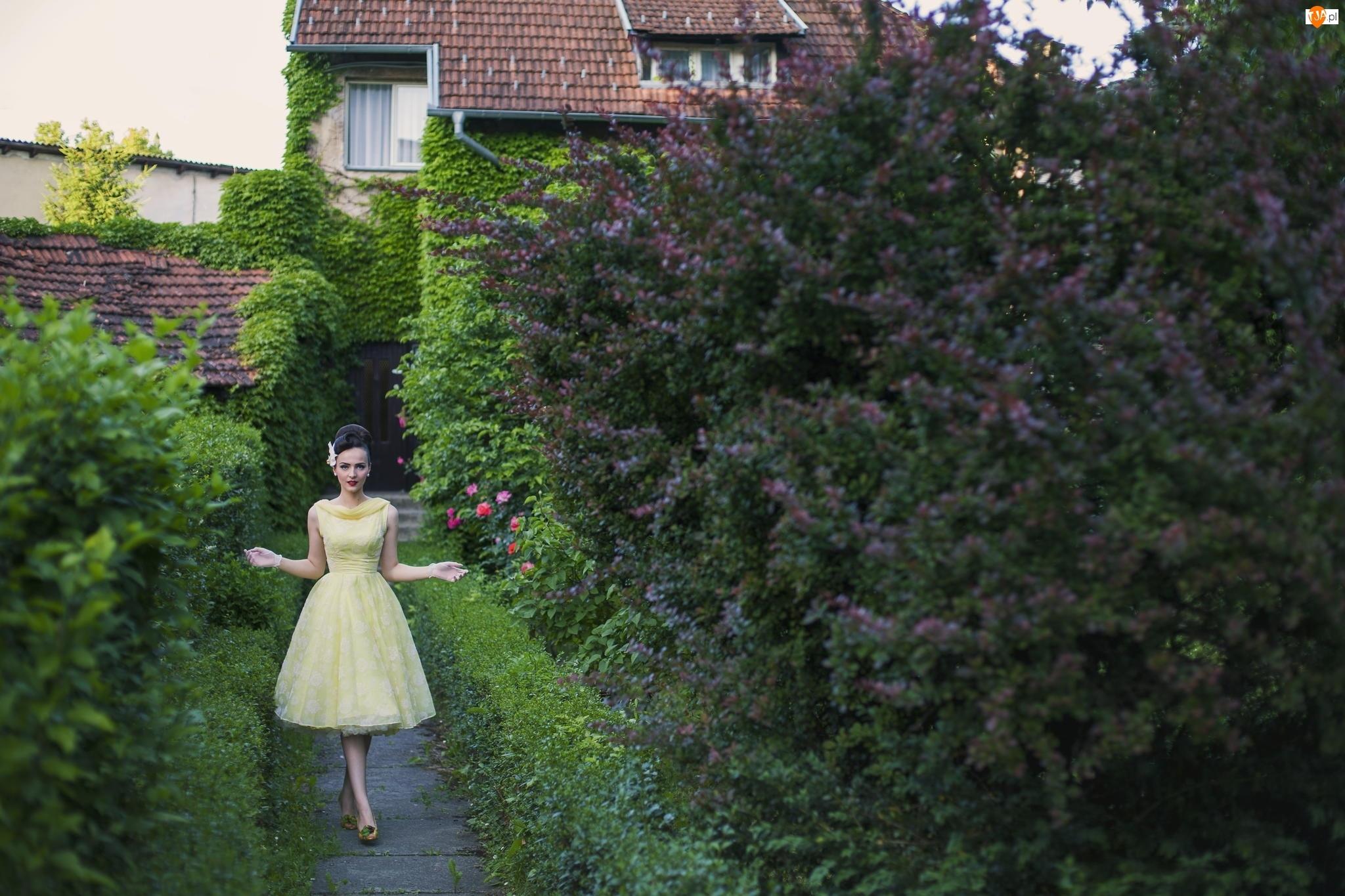 Ogród, Drzewa, Kobieta, Krzewy, Dom, Kwitnące