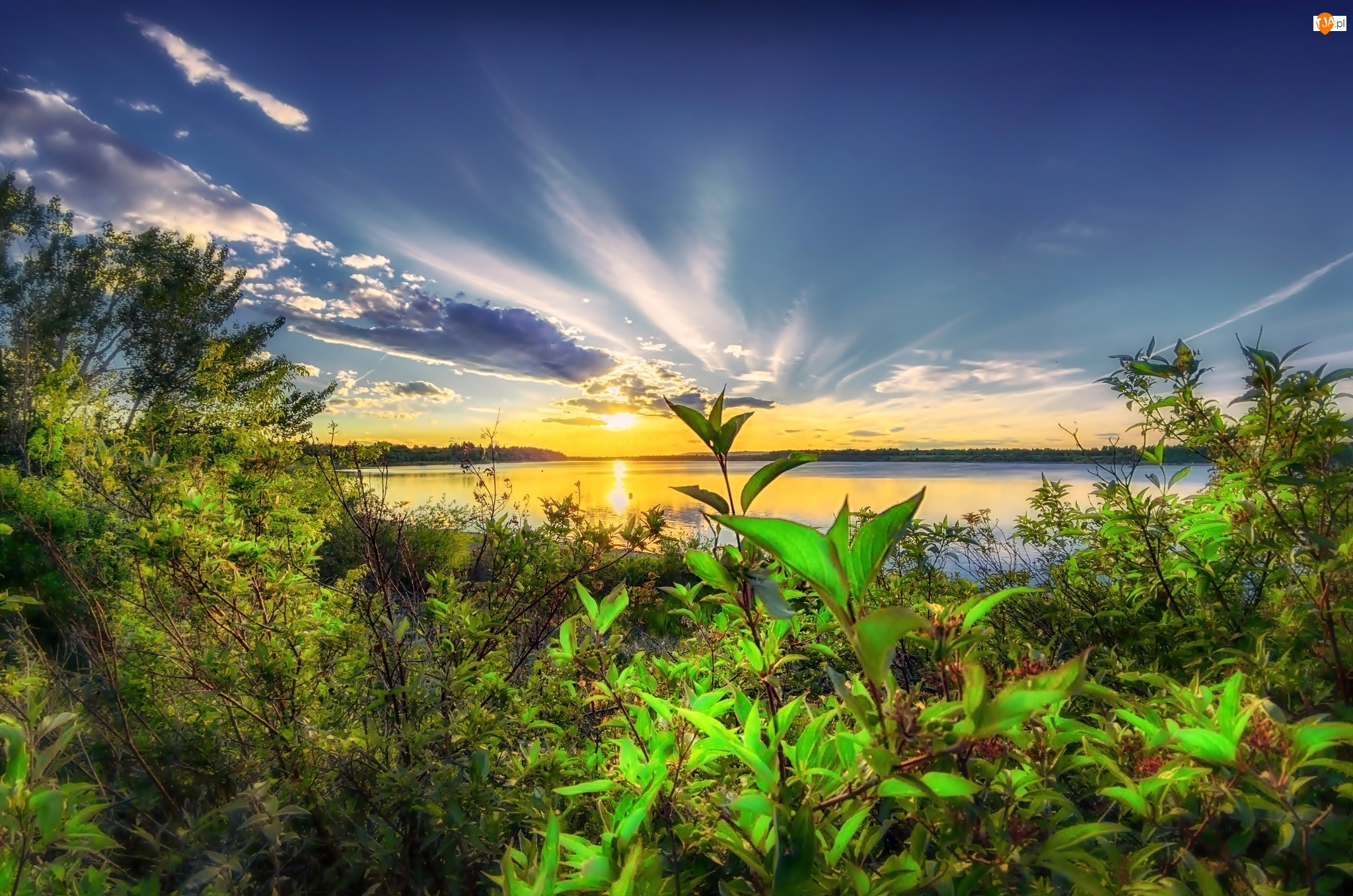 Kanada, Jezioro, Krzewy, Zachód Słońca, Alberta