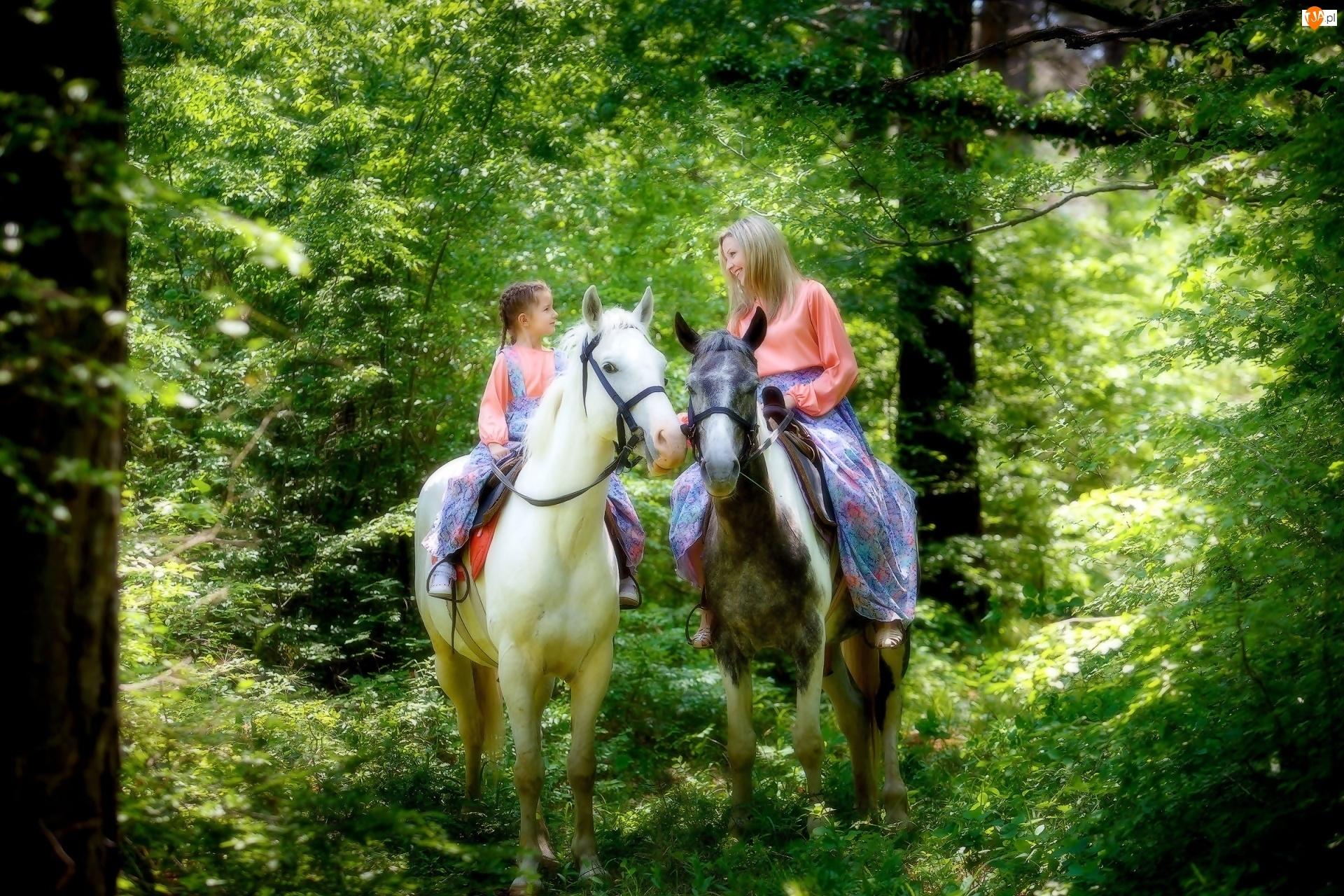 Kobieta, Las, Dziewczynka, Konie