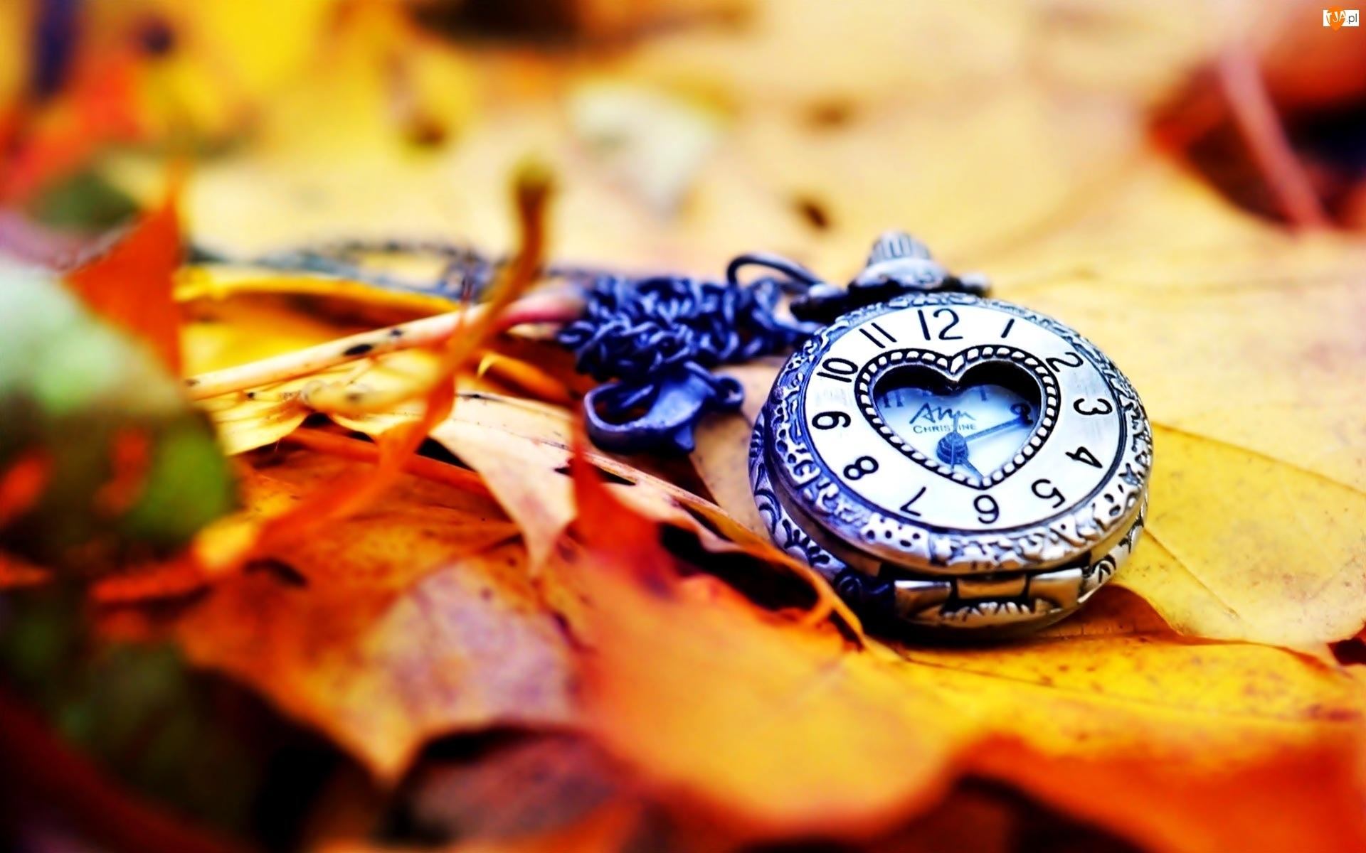 Liście, Zegarek, Jesienne