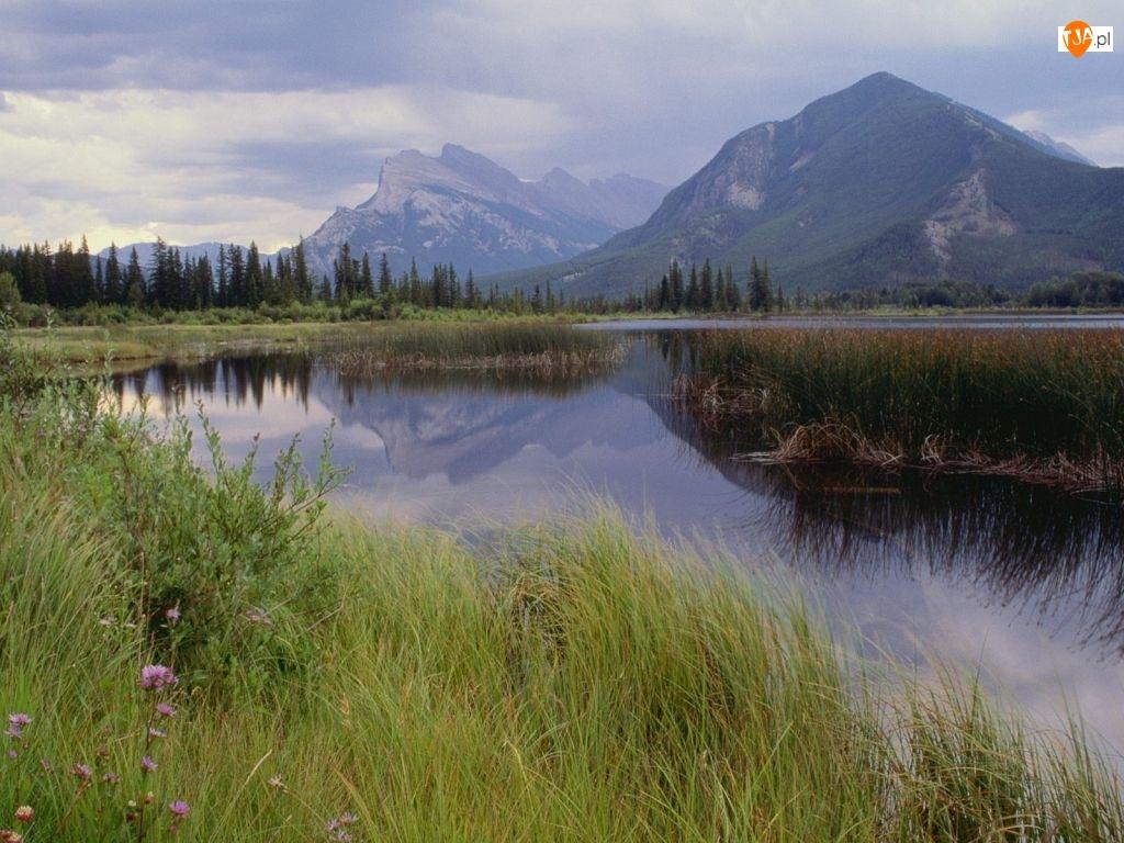 Kanada, Woda, Góra, Trawa