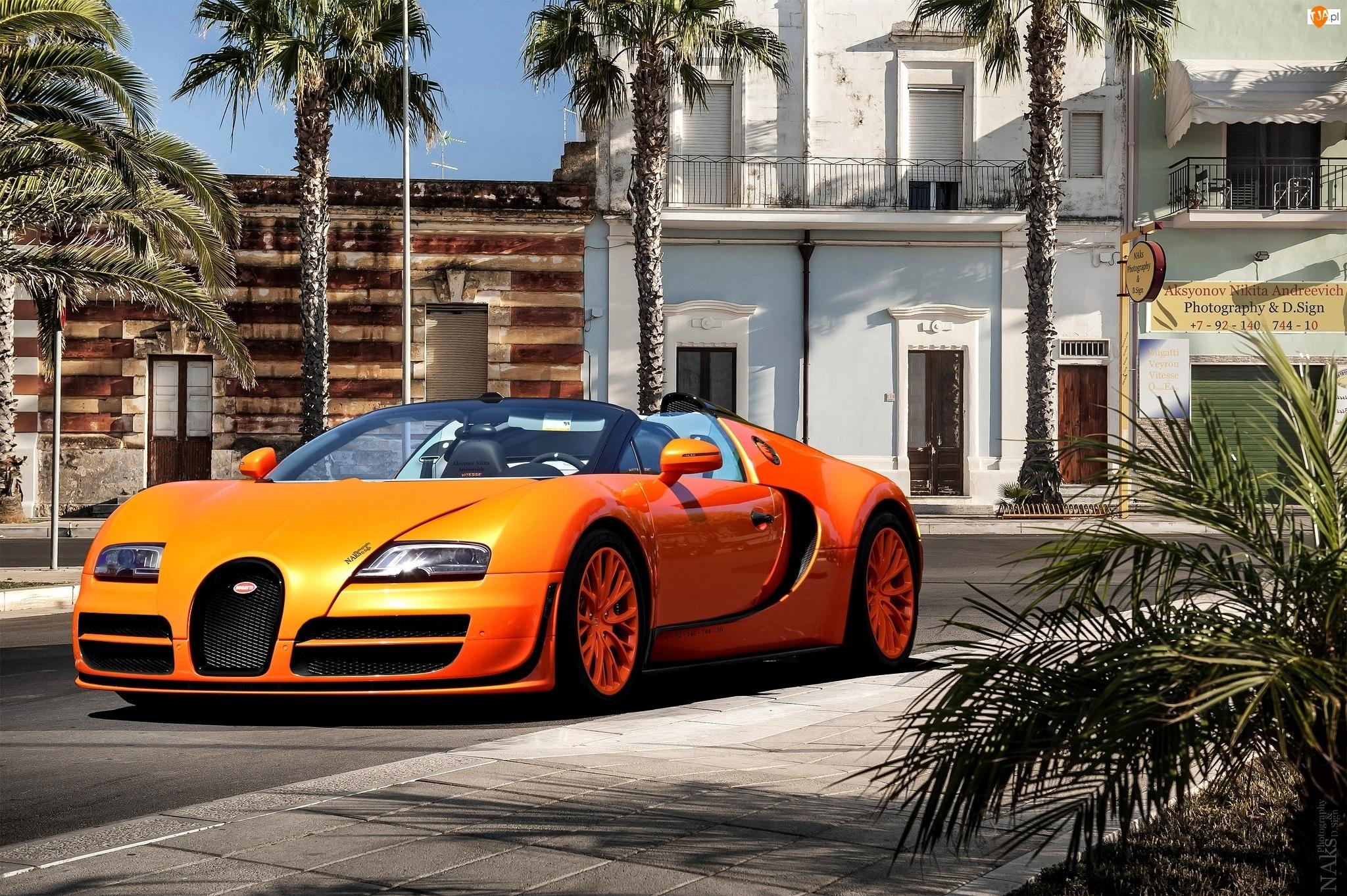 Palmy, Bugatti Veyron Vitesse, Ulica