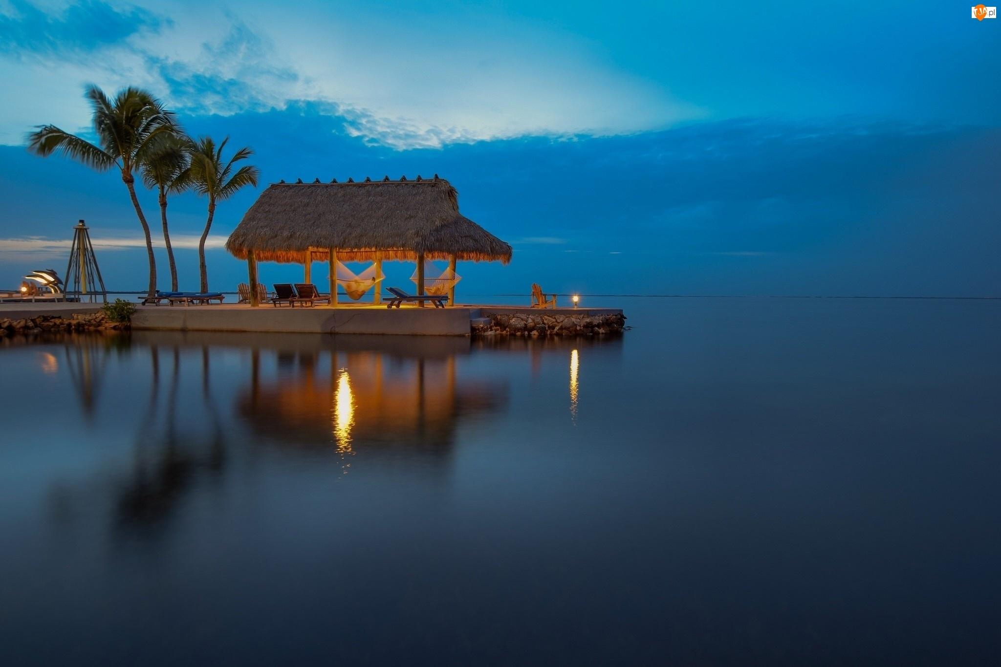 Palmy, Kurort, Floryda, Stany Zjednoczone, Wakacje, Wyspa Key Largo, Morze