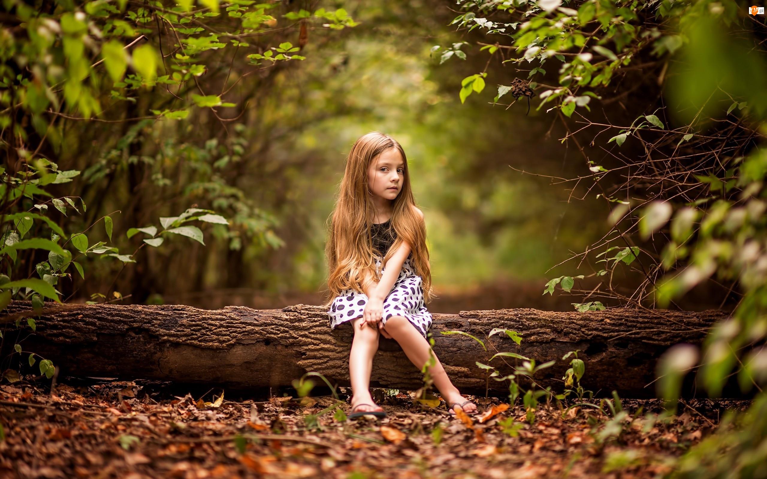 Liście, Dziecko, Las, Dziewczynka, Drzewo