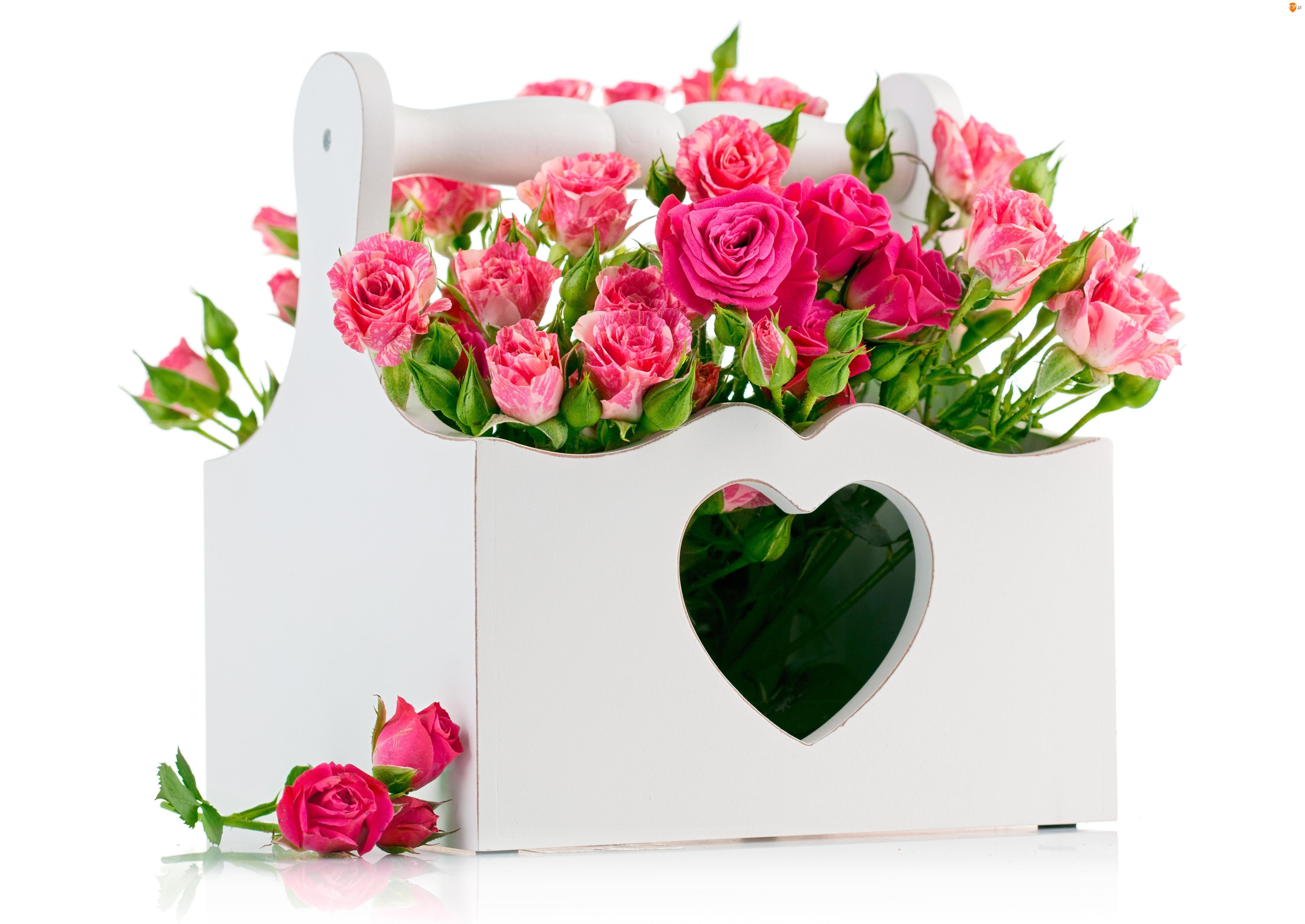 Skrzyneczka, Kwiaty, Róże