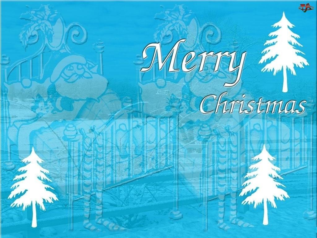 Boże Narodzenie, choinki