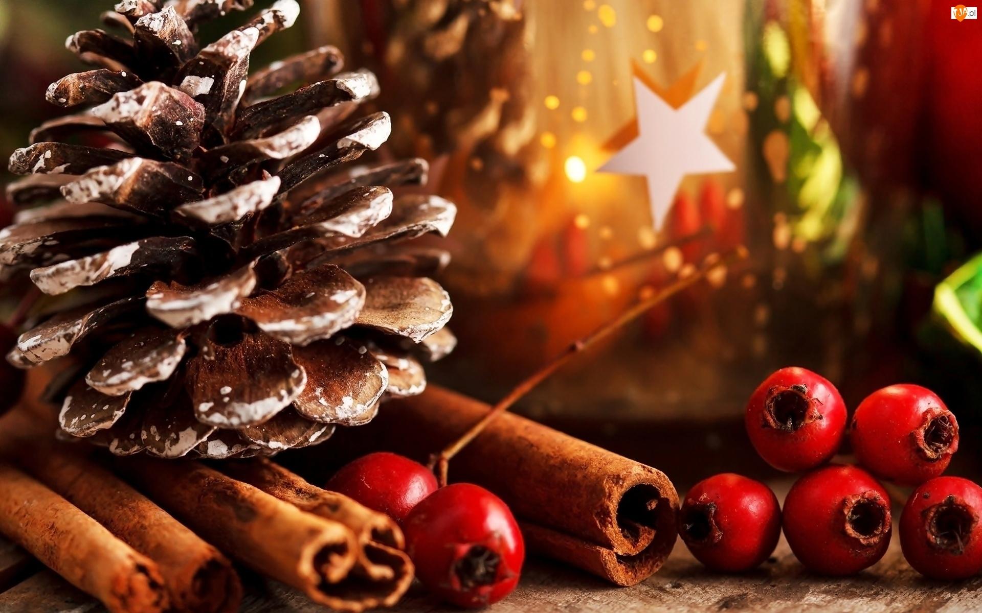 Szyszka, Świąteczne, Laski, Cynamon