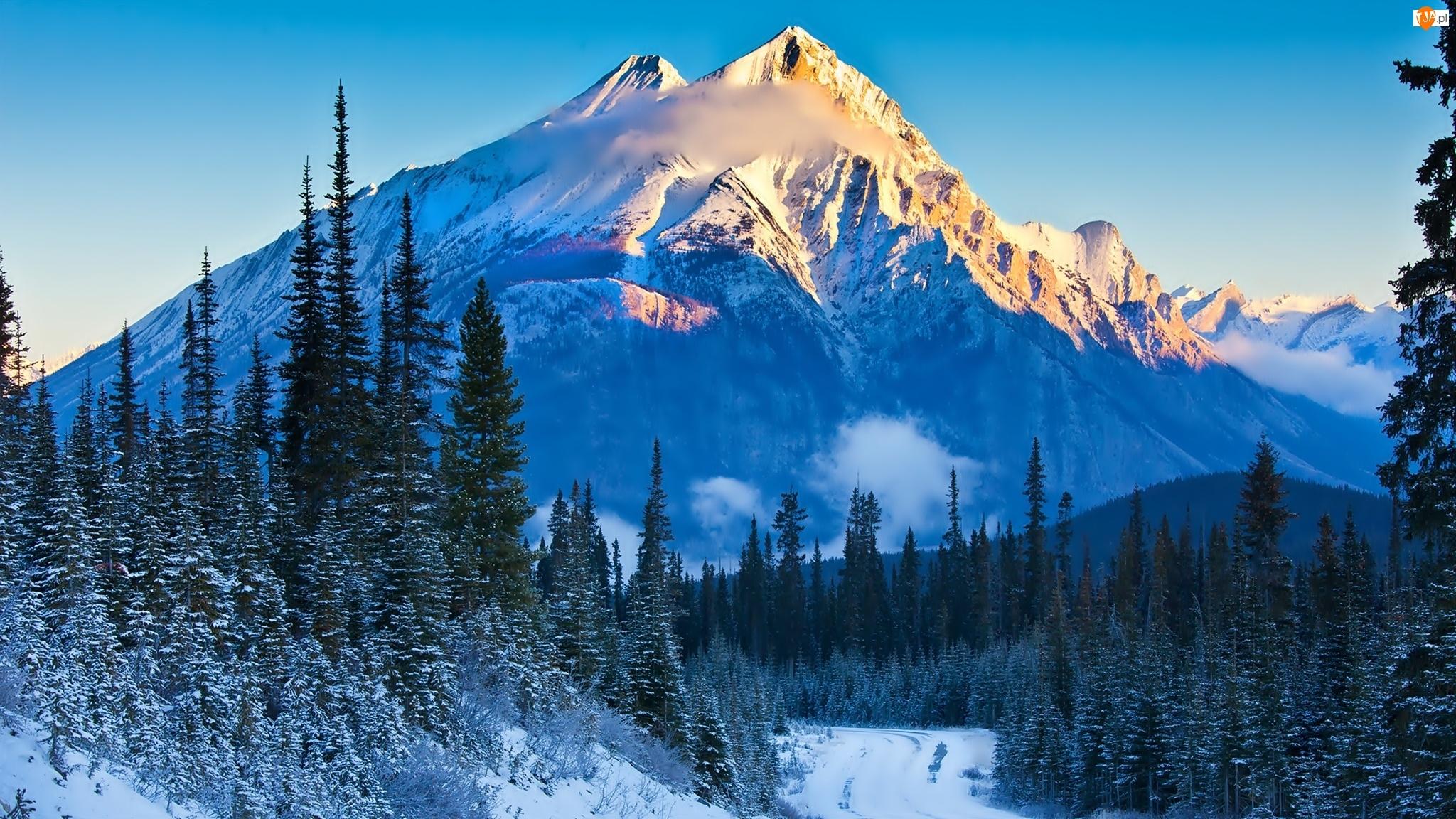 Las, Zima, Góry
