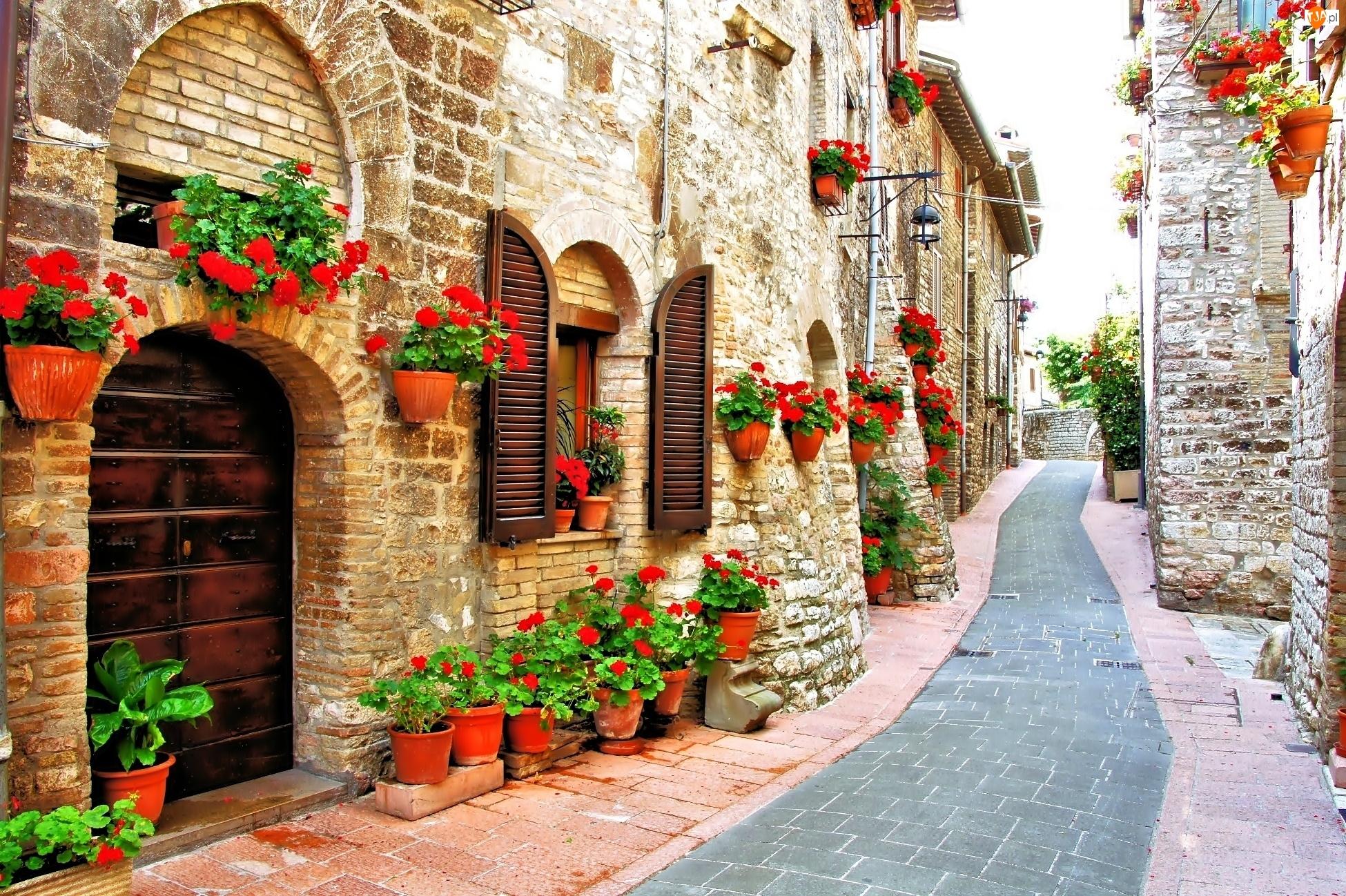Domy, Włochy, Ulica, Kwiaty