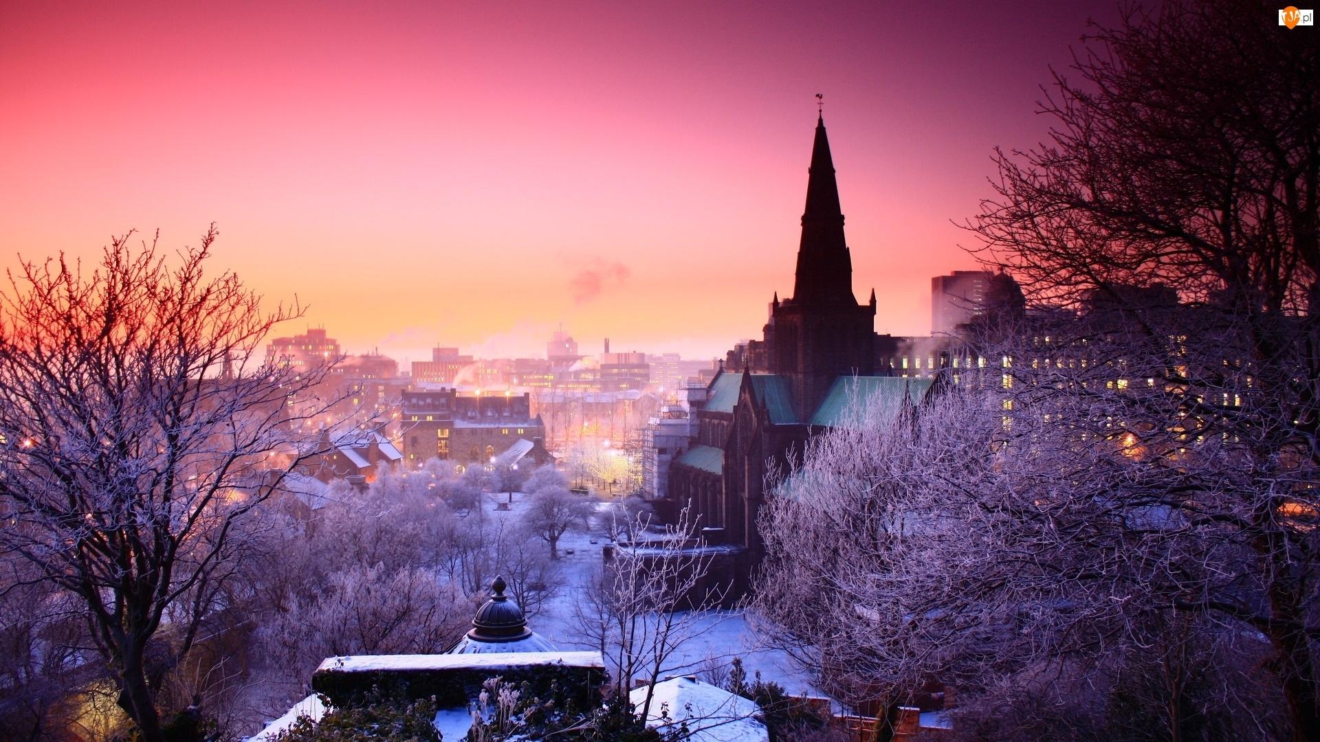 Drzewa, Szkocja, Zima, Kościół, Budynki, Wielka Brytania, Glasgow